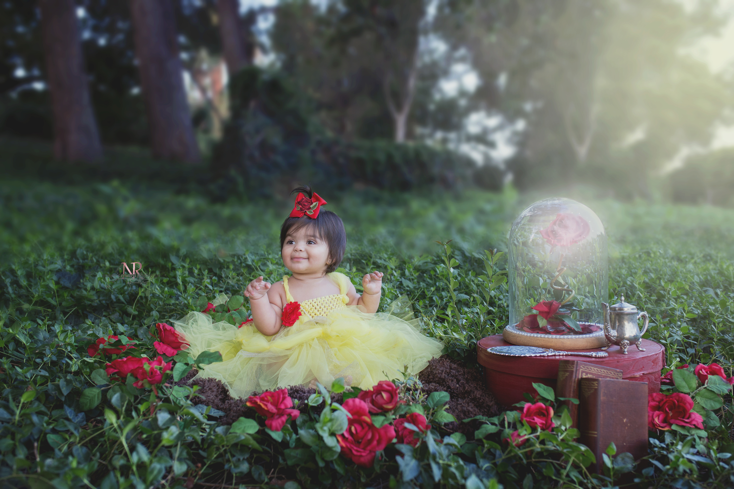 Gorgeous girl pictured in a Beauty and the Beast theme! Happy Birthday Little Belle!