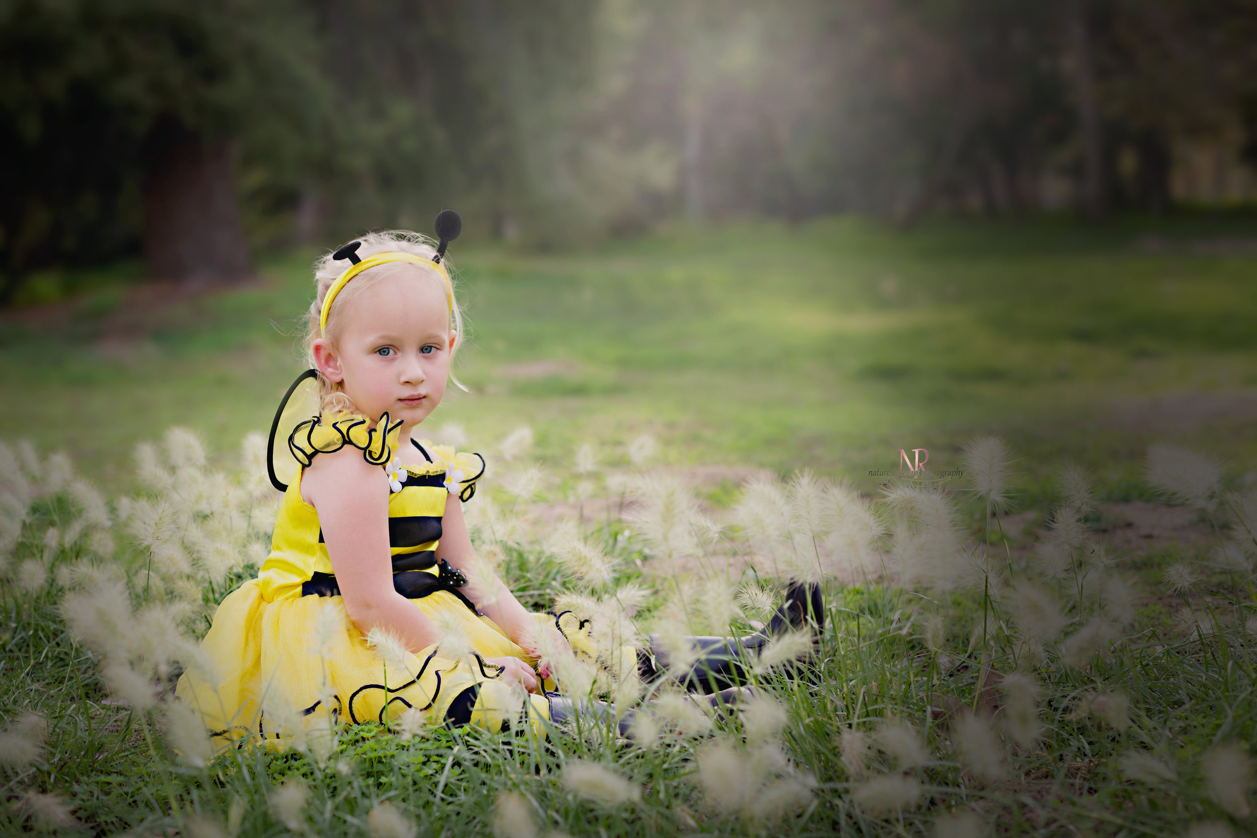 Busy Bee Birthday Portrait