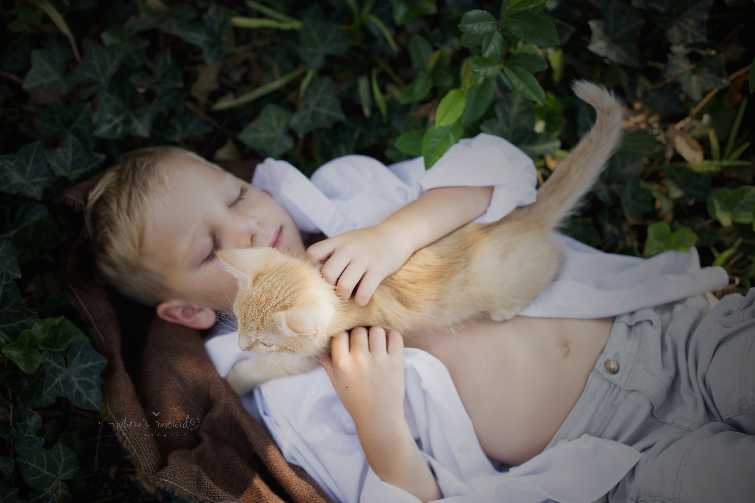 This little boy kitten laid out on Caden and his fluffy hair caught the light and and even in the soft shadow of the morning light Caden's beautiful skin glowed.