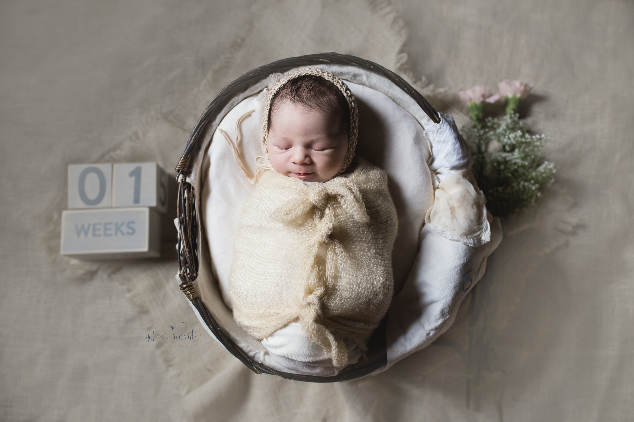 Images for the living room were next!  Beautiful baby girl in tan!  The soft pink flowers and lovely wooden blocks compliment the image.