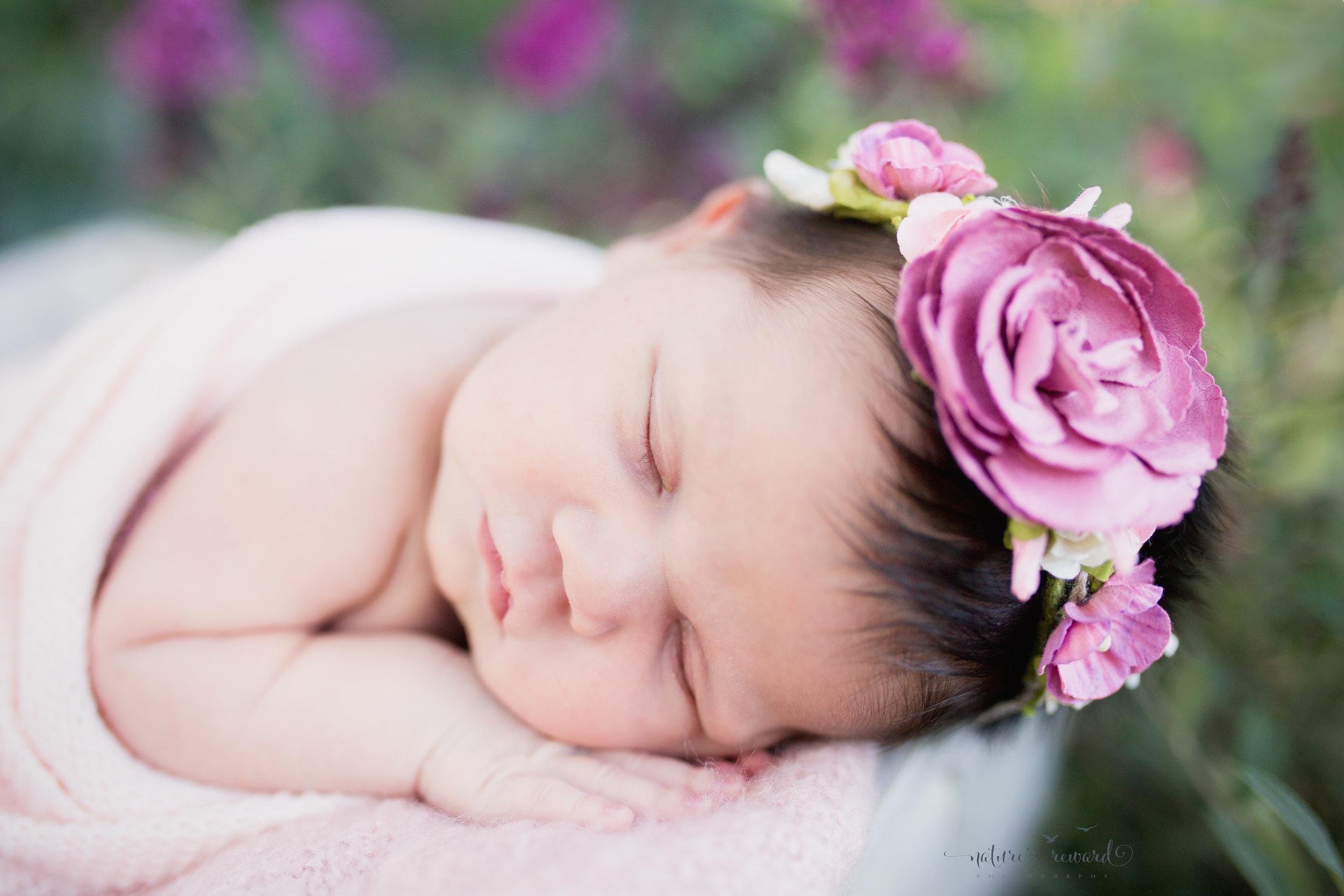 Beauty sleeps