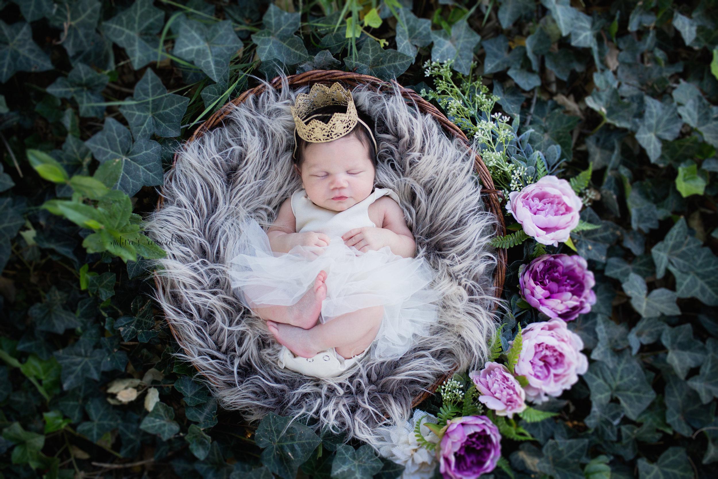The Ivy Princess