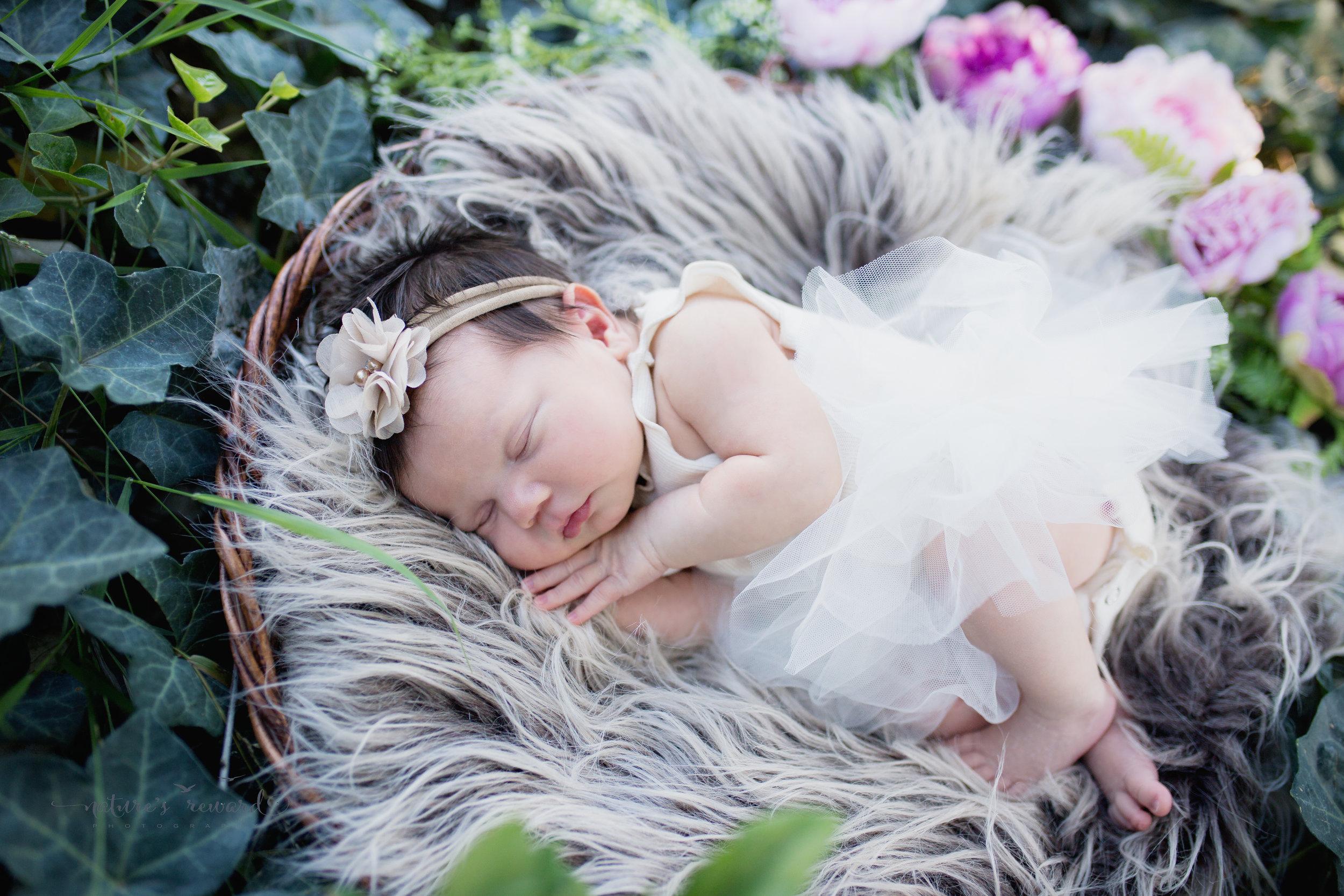 In the ivy garden she sleeps
