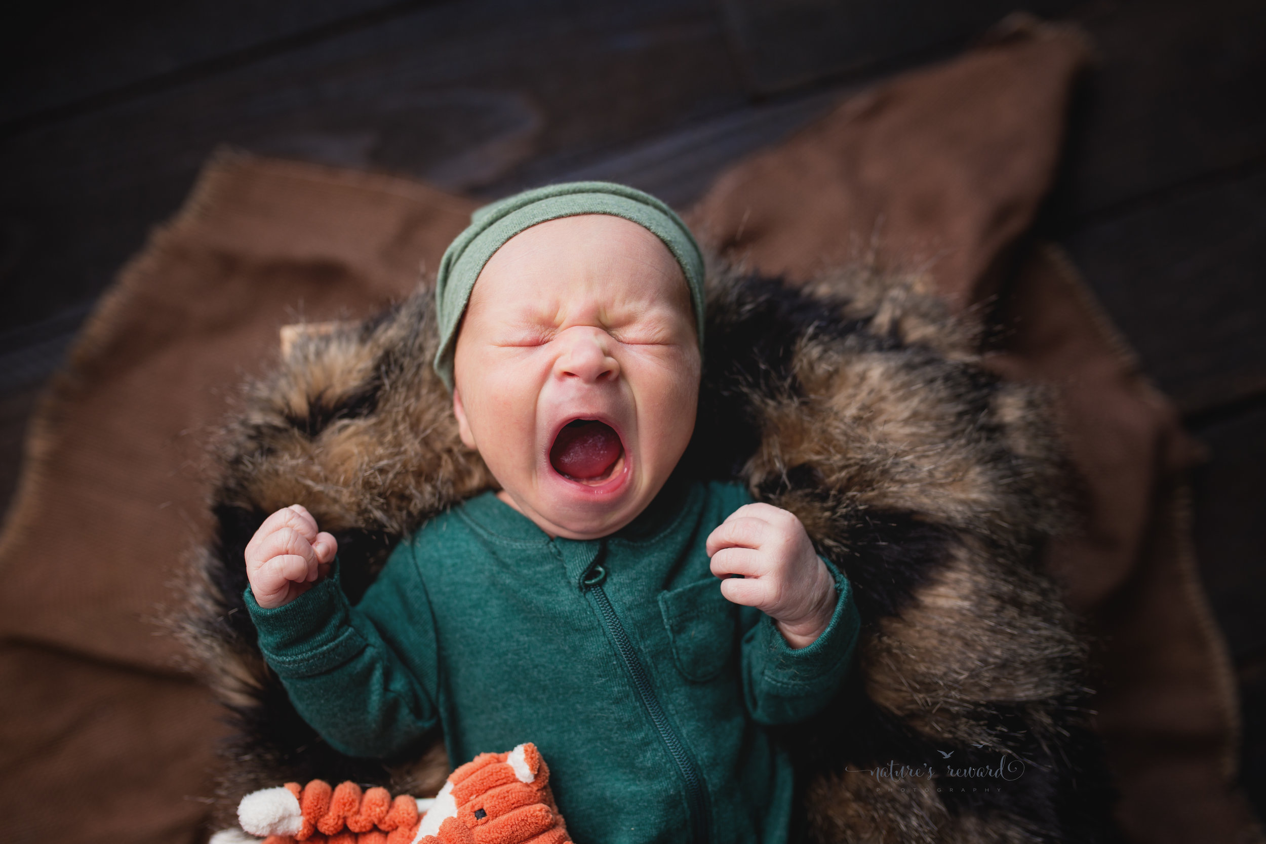 And then he yawned. A great big yawn. And he brought a smile to your heart with that yawn