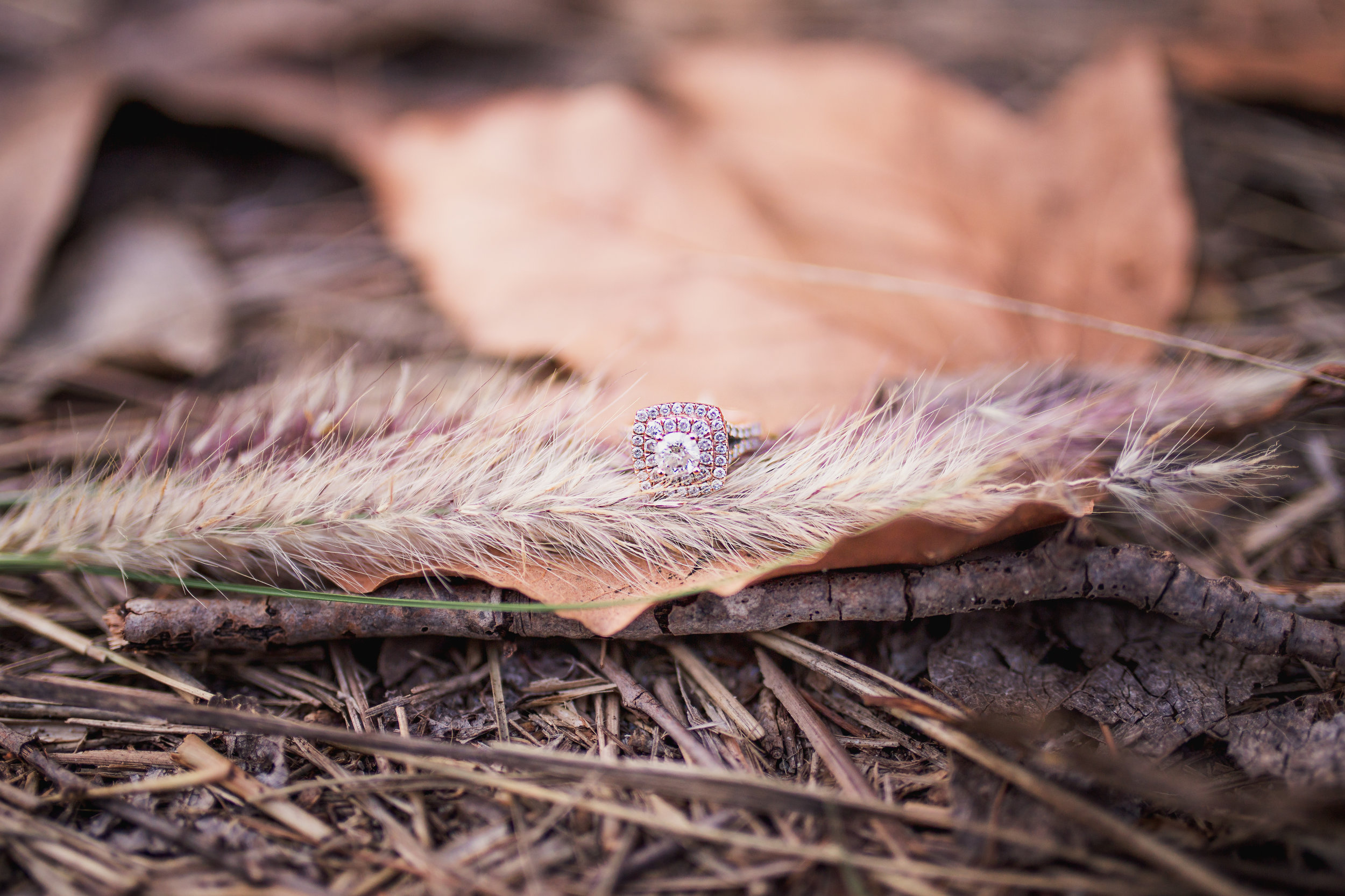 The gorgeous rose gold ring won fall foliage.