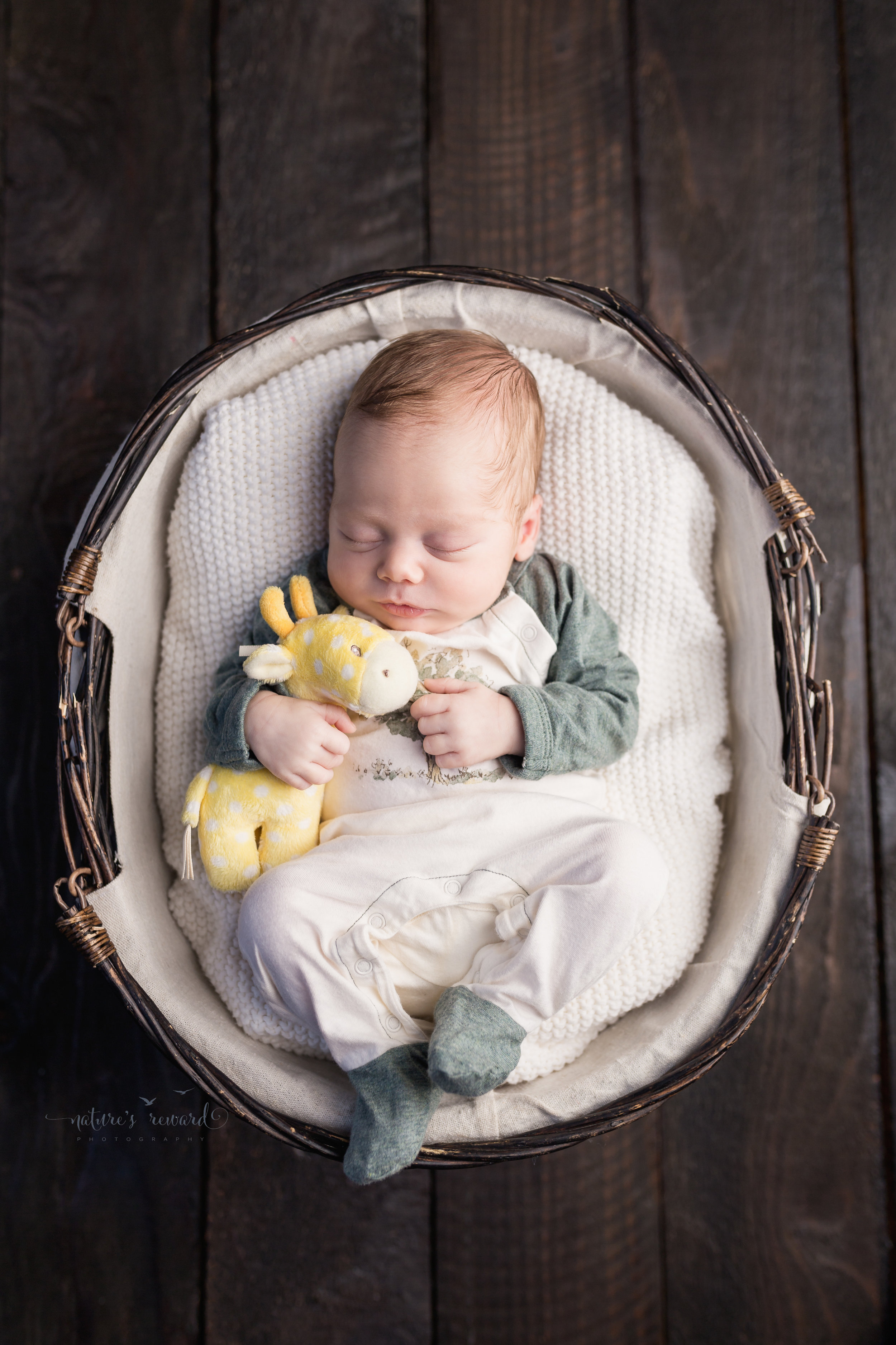 The color version of a newborn baby boy wearing an outfit brought from home of soft greens and white while holding his very own giraffe white nestled in a basket by Southern California newborn and family photographer Nature's Reward Photography