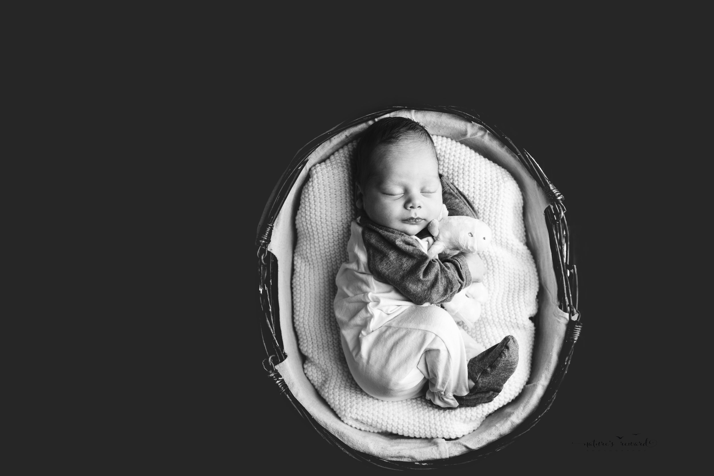 Fine art Black and white portrait of baby boy laying in a fetal position holding his very own giraffe by Southern California newborn and family photographer Nature's Reward Photography
