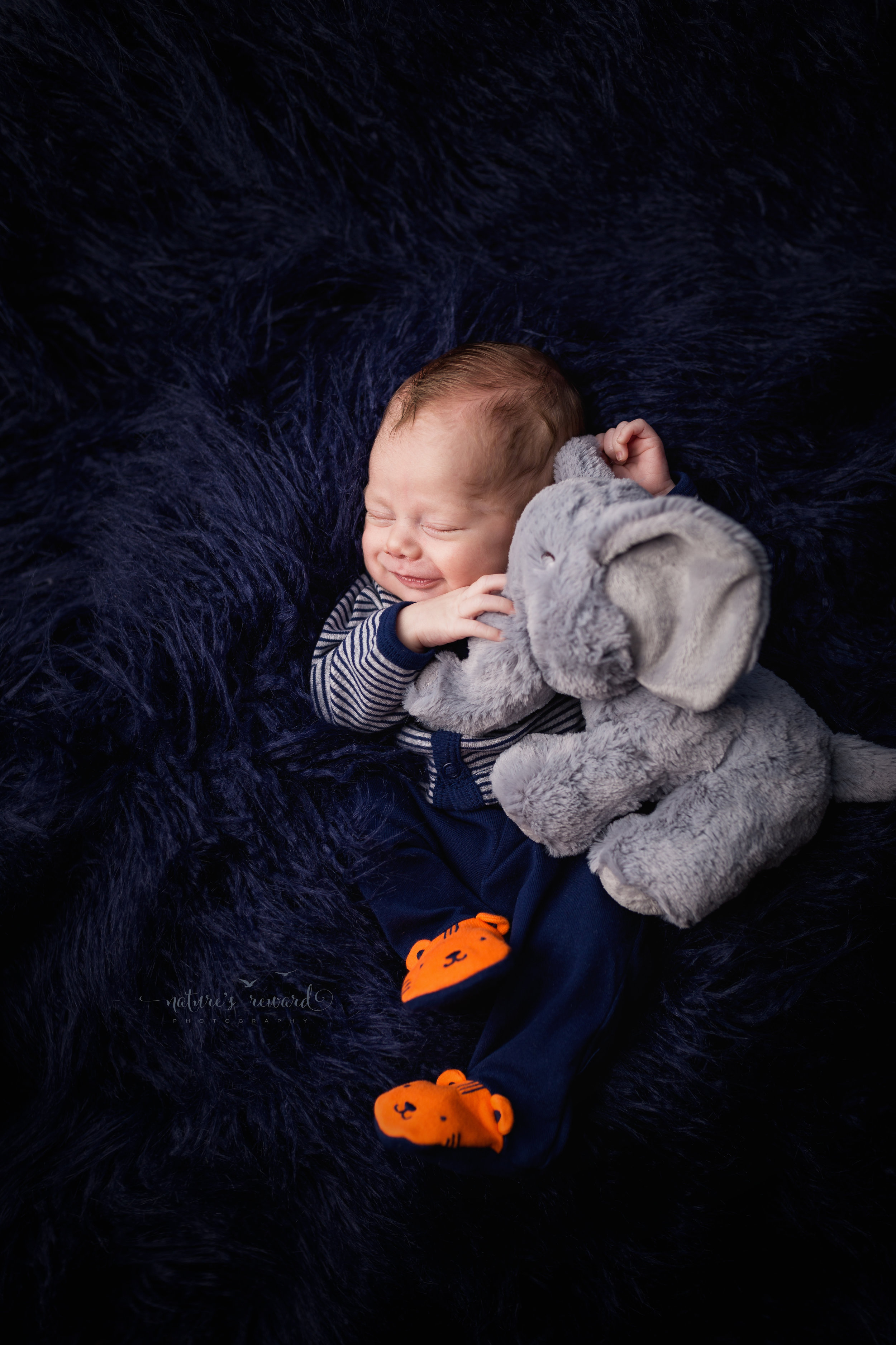 Newborn Baby boy holding his elephant from home while wearing an outfit Brough by his parents in a field of blue fur while smiling by Southern California newborn and family photographer Nature's Reward Photography
