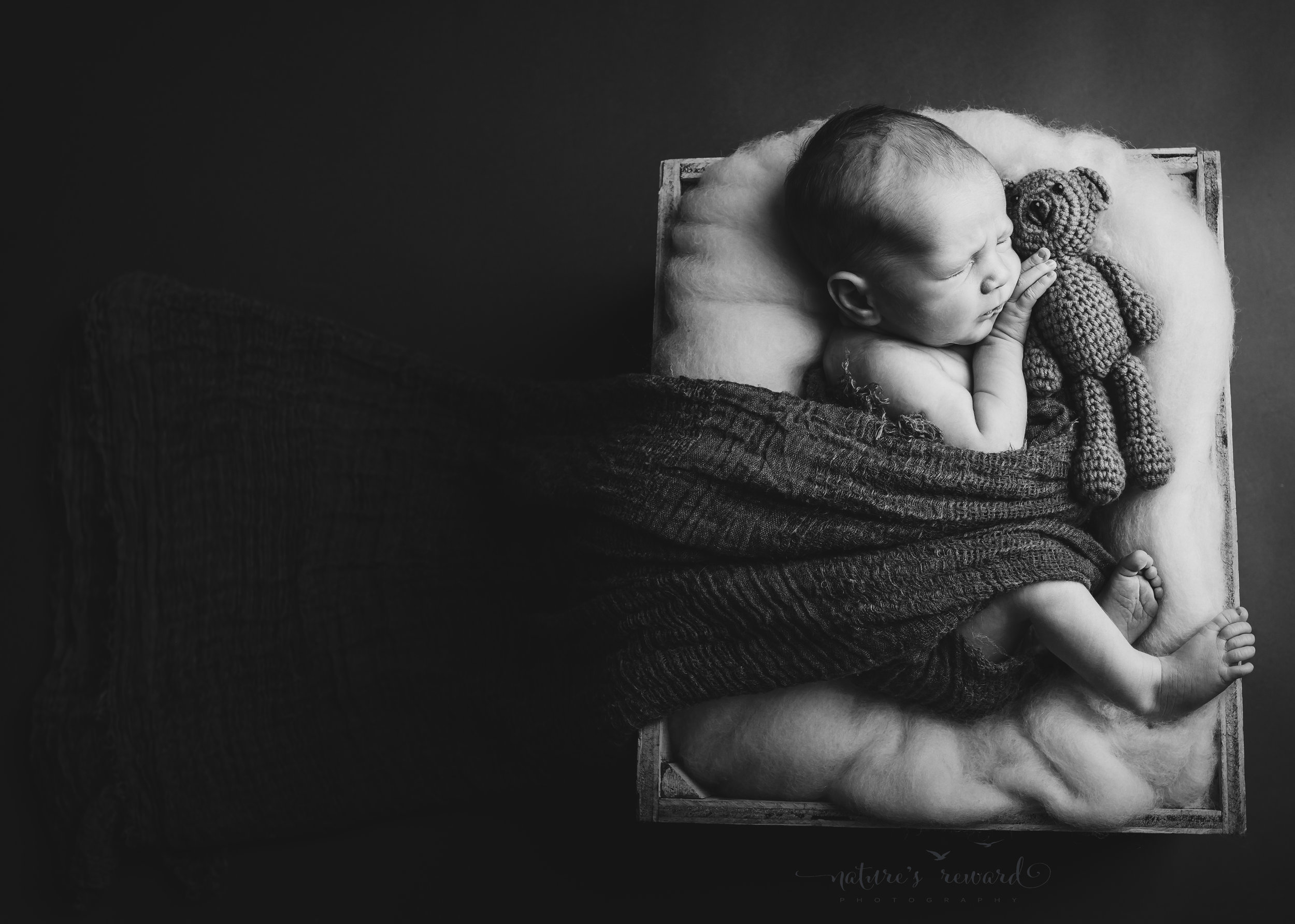 This stunning black and white image with a remarkable use of negative space and lovely lighting on this sweet newborn baby boy's face while he cuddles a teddy and is wrapped while snuggled into a box full of white fluff- A newborn portrait by Nature's Reward Photography