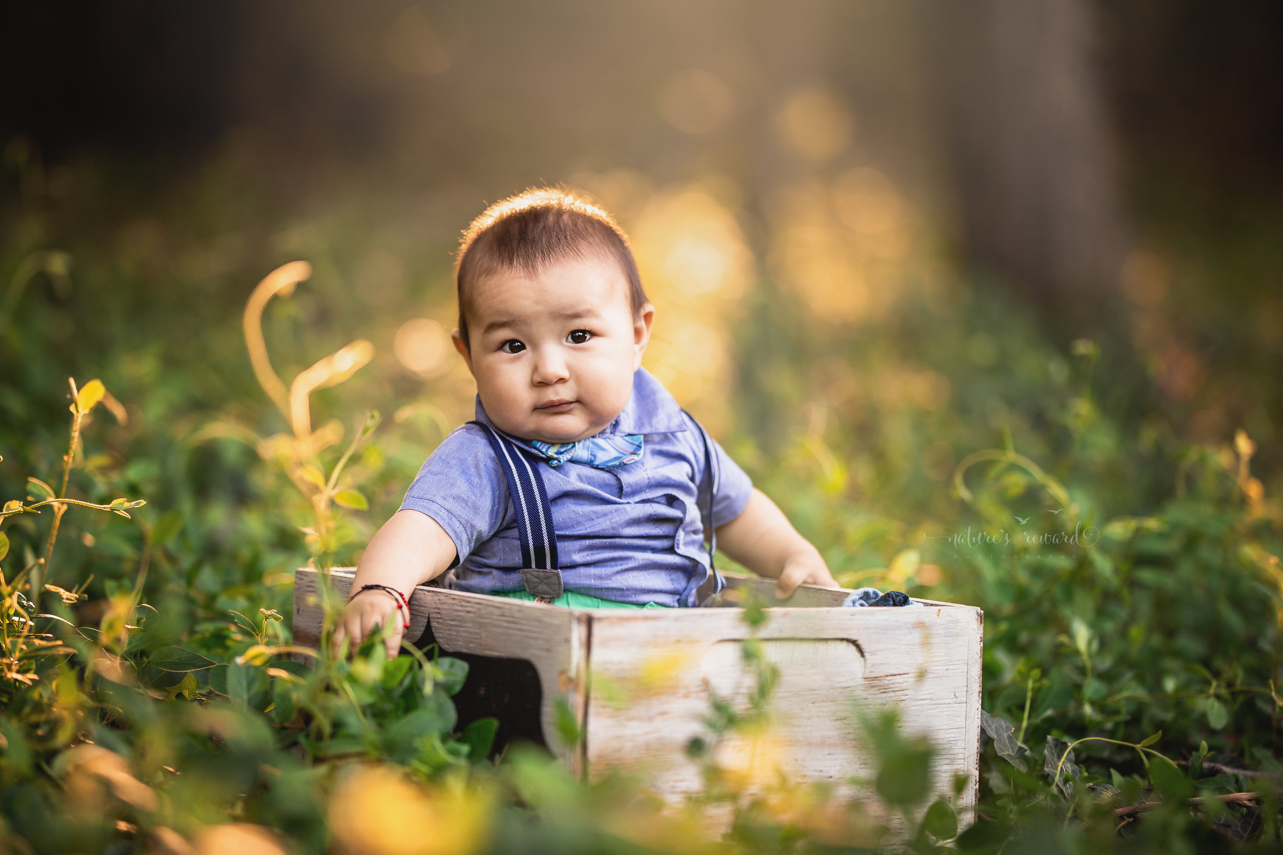 Beautiful baby boy 6 months old,in this lovely portrait by Nature's Reward Photography