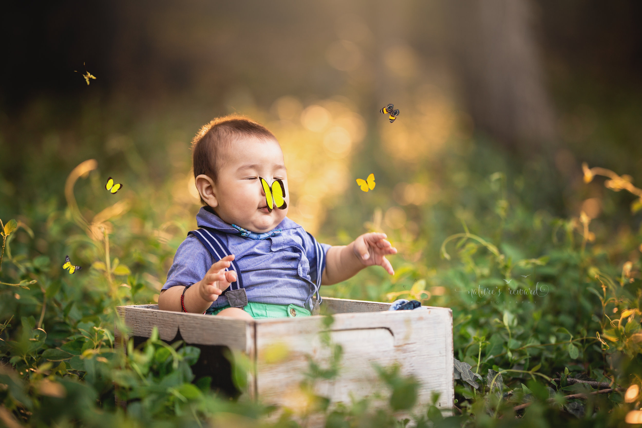 We captured this lovely portrait of his eyes closed, and I added this lovely butterfly to give this fine art portrait some pizzazz,in this lovely portrait by Nature's Reward Photography