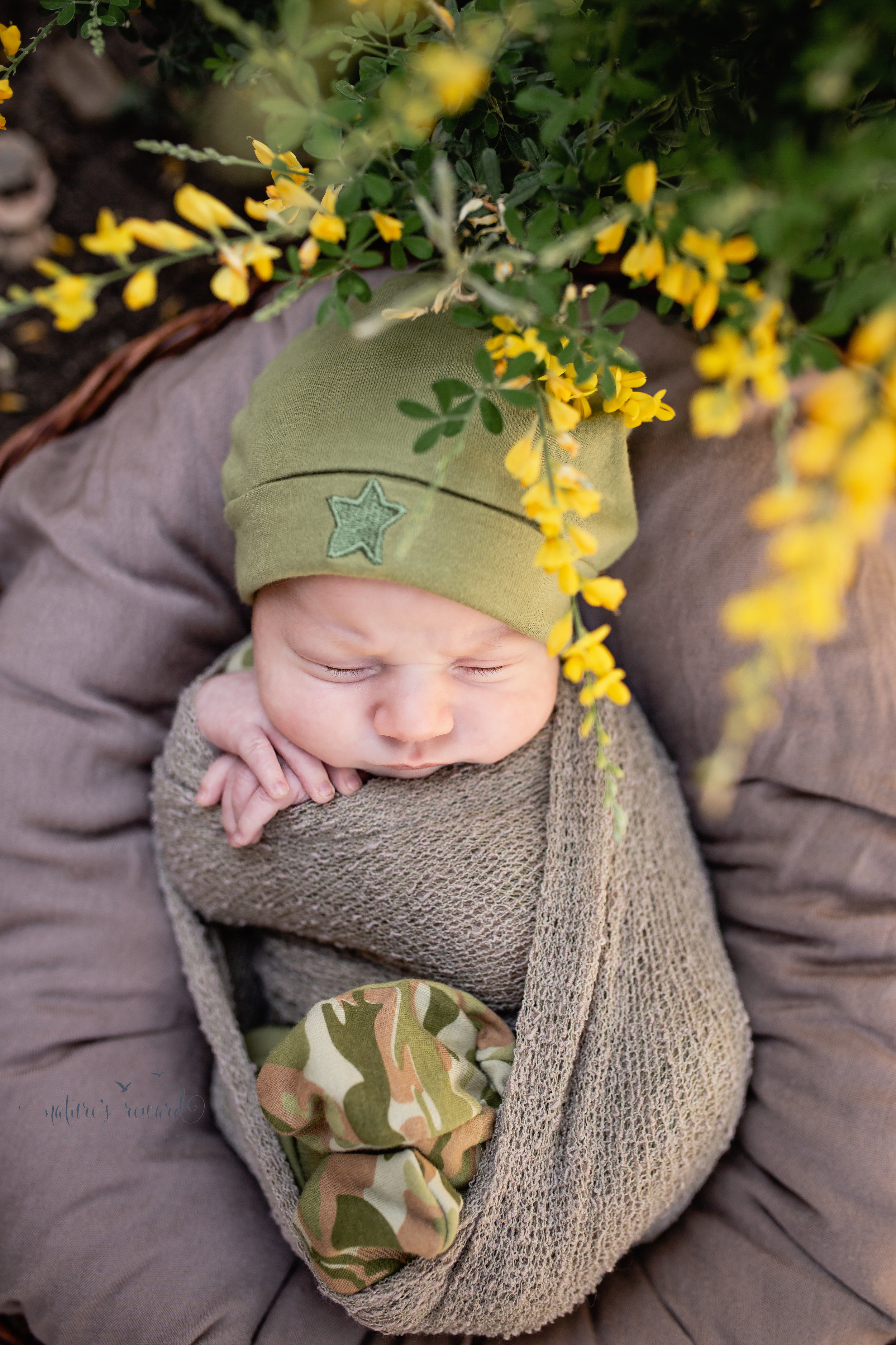 Baby Boy in a Garden Newborn Session wearing the camouflage booties and beanie his mother brought and snuggly wrapped under a yellow flowering plant in this portrait by Nature's Reward Photography