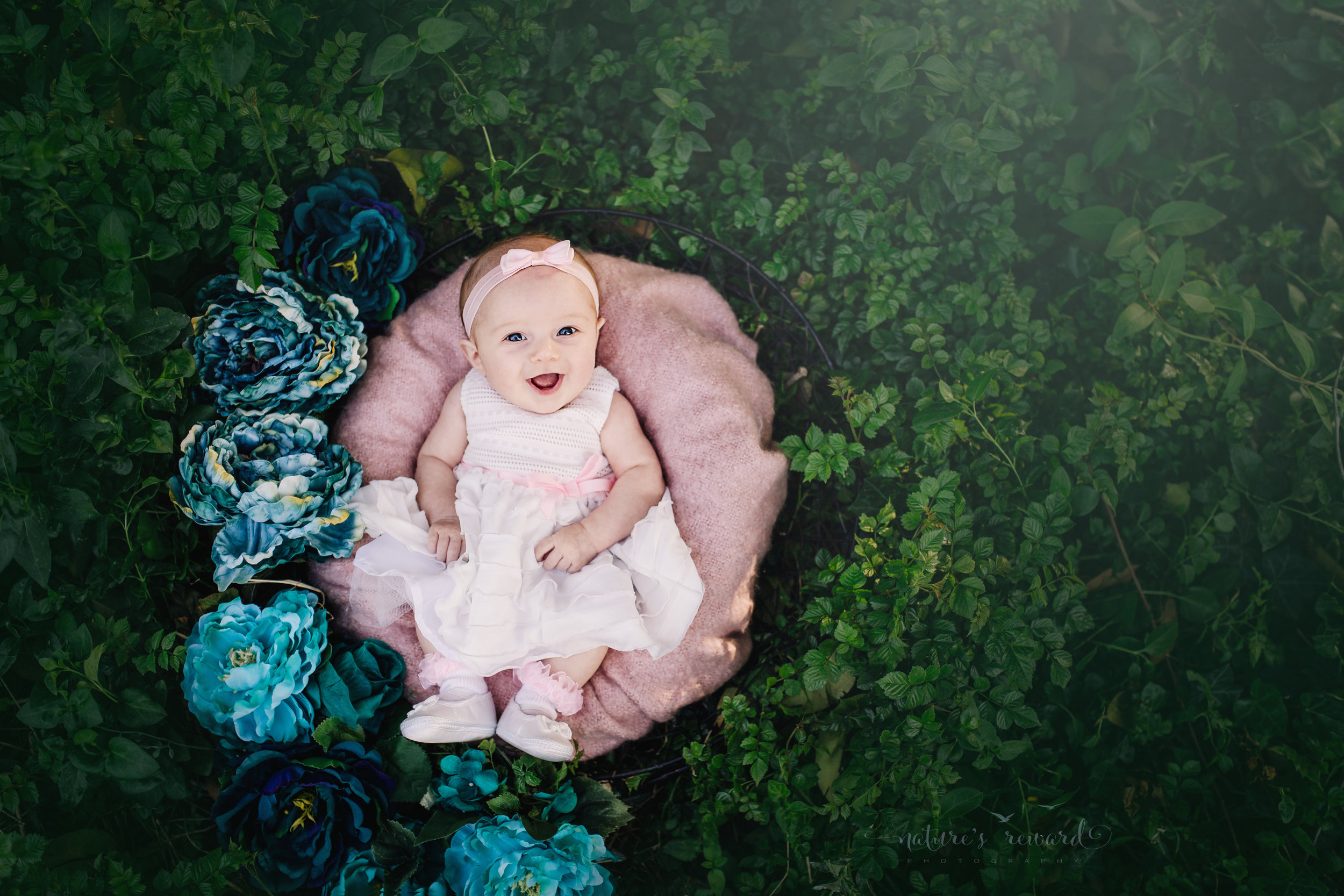 Three (3) month old smiling baby girl in a white dress and pink hair band smiles with joy in a basket with a pink blanket with blue and teal flowers accenting the ivy in this portrait by Nature's Reward Photography.