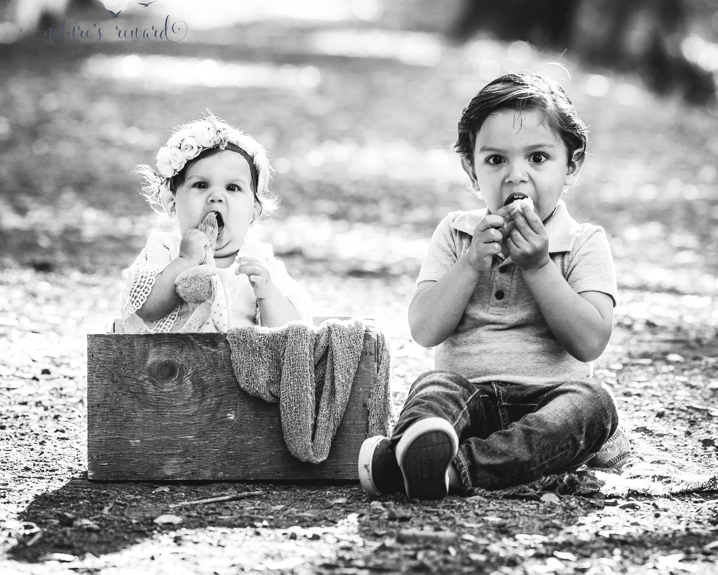 Baby girl sits in a wooden box wearing white lace romper and a flower crown while engaging with her big brother in this adorable outtake portrait by Nature's Reward Photography
