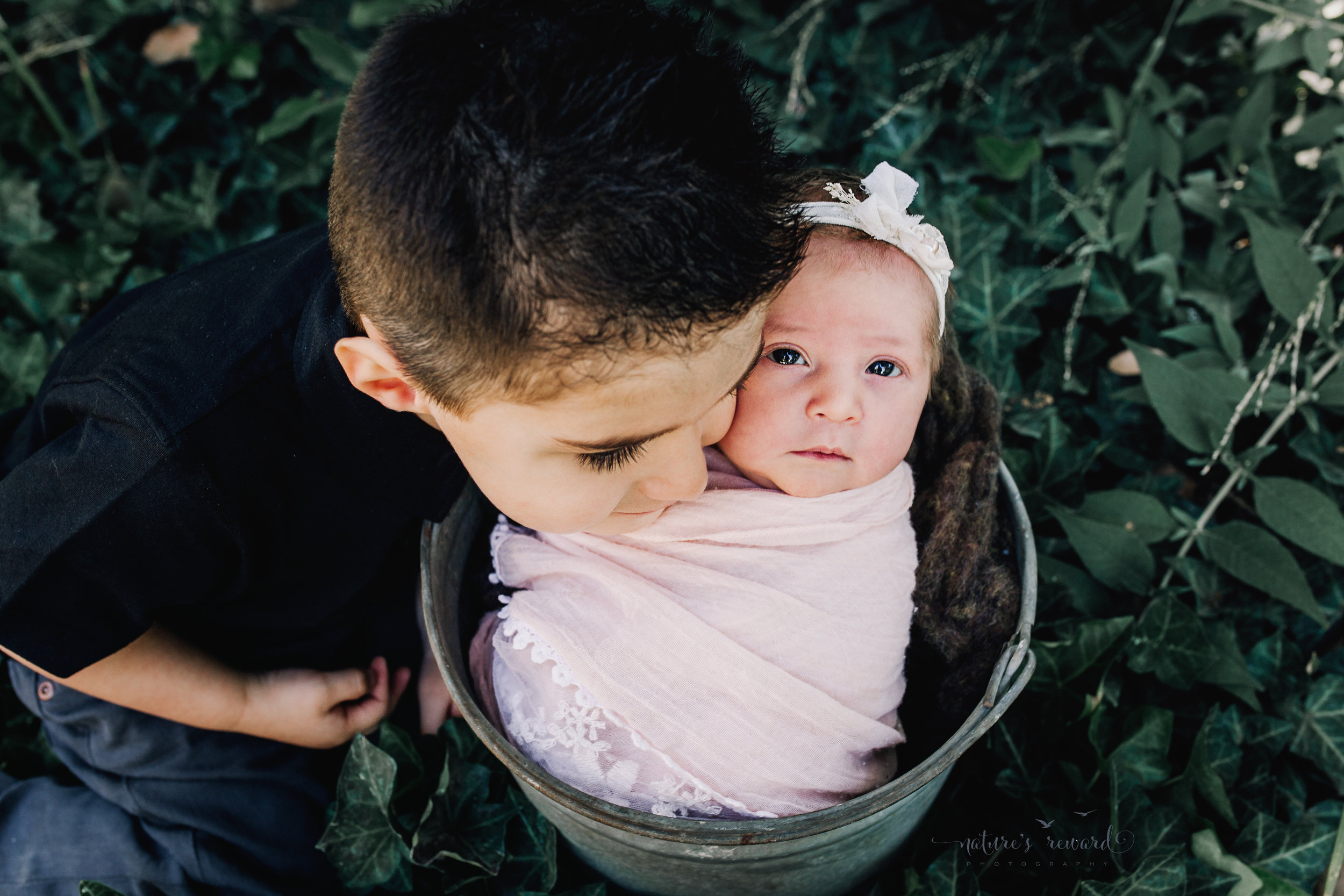 Newborn Baby Girl swaddled in pink lace in a garden with white flowers a bucket being loved by her big brother. A Portrait By Nature's Reward Photography, a San Bernardino Family, Child, and Newborn Baby Photographer.