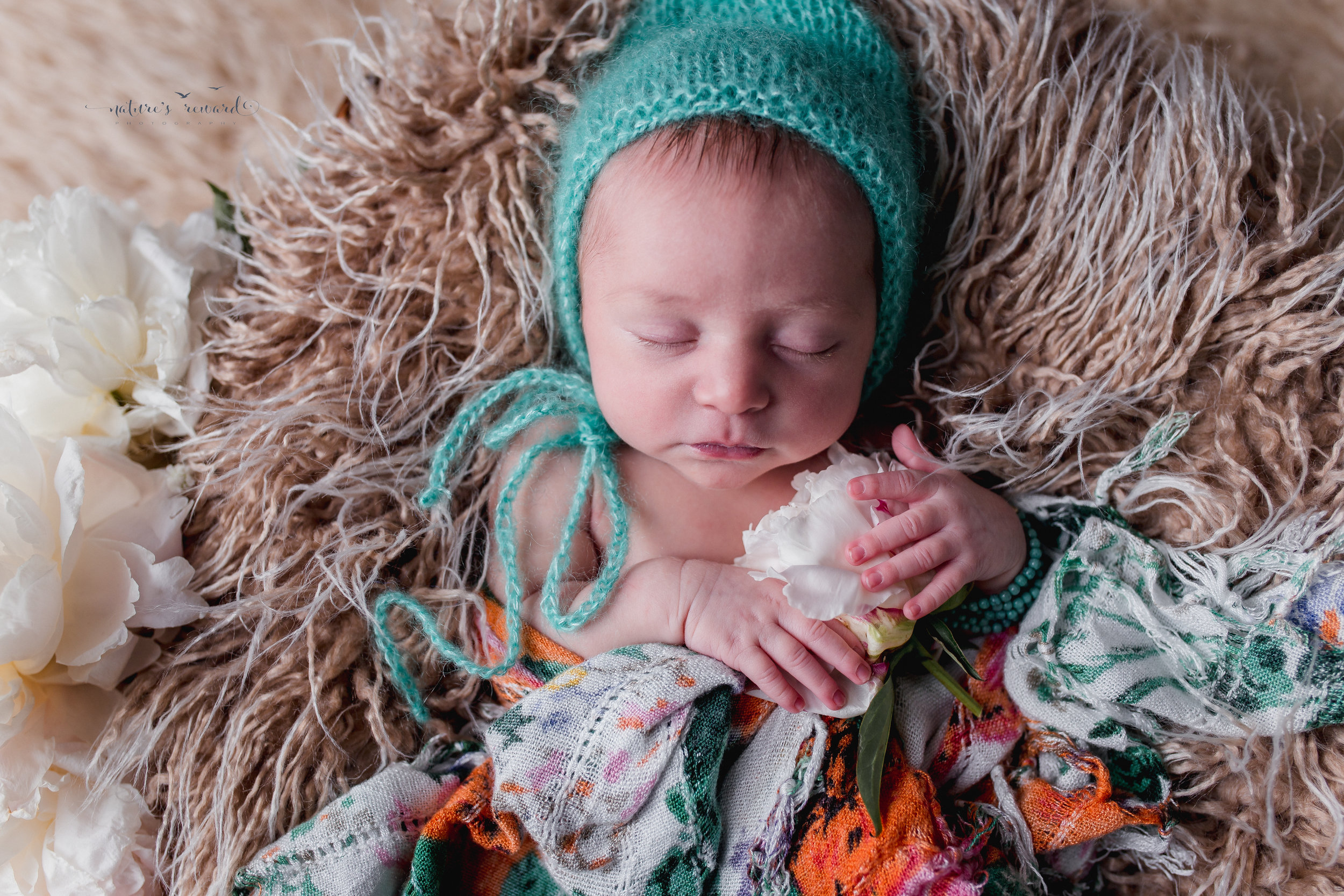Newborn baby portrait in whites and soft teal, laying on a bed of fur holding her peony.A Portrait By Nature's Reward Photography, a San Bernardino Family, Child, and Newborn Baby Photographer.