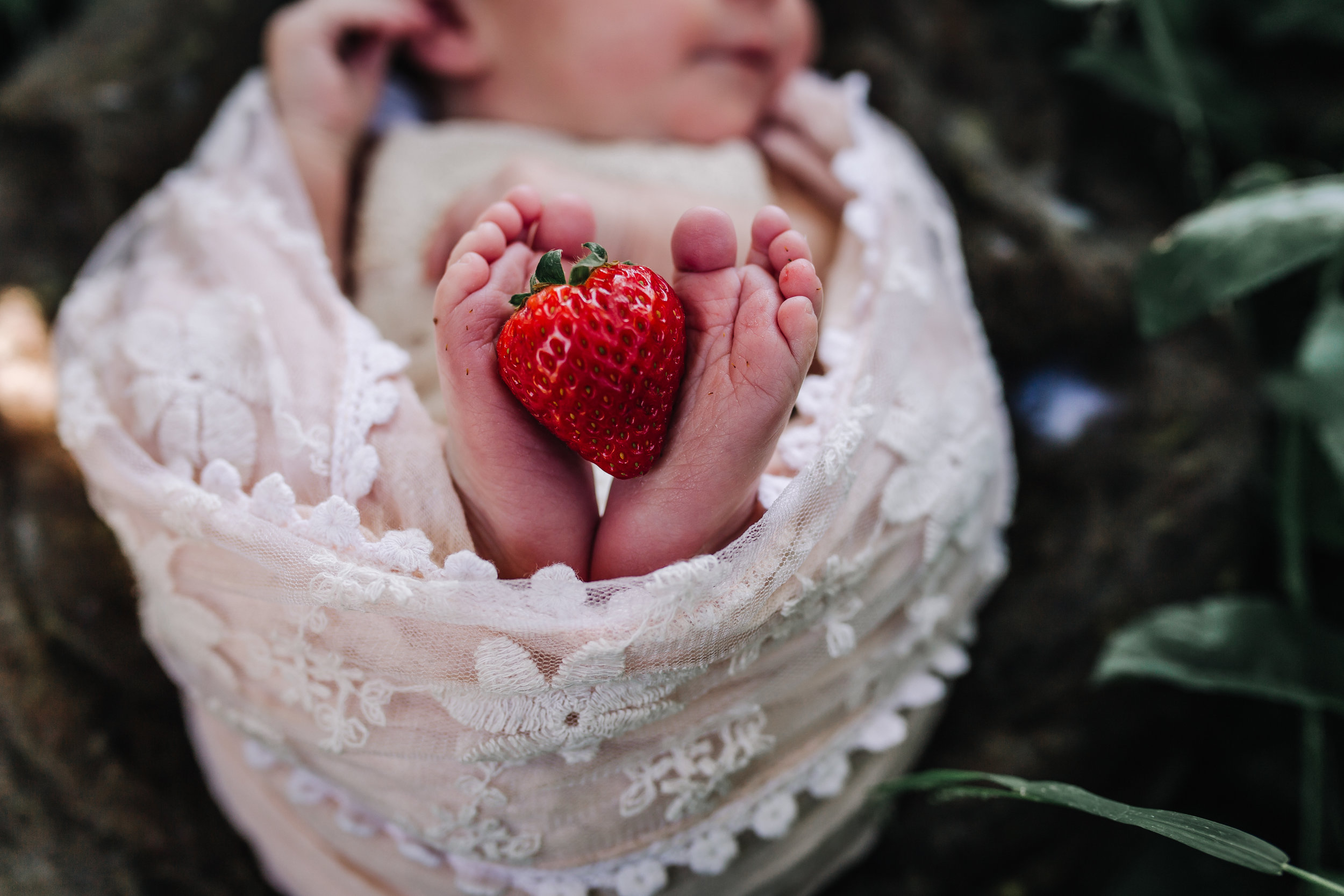 Newborn Baby Girl in a lace romper swaddled in pink lace in a garden with white flowers and red strawberries- detail portrait. A Portrait By Nature's Reward Photography, a San Bernardino Family, Child, and Newborn Baby Photographer.