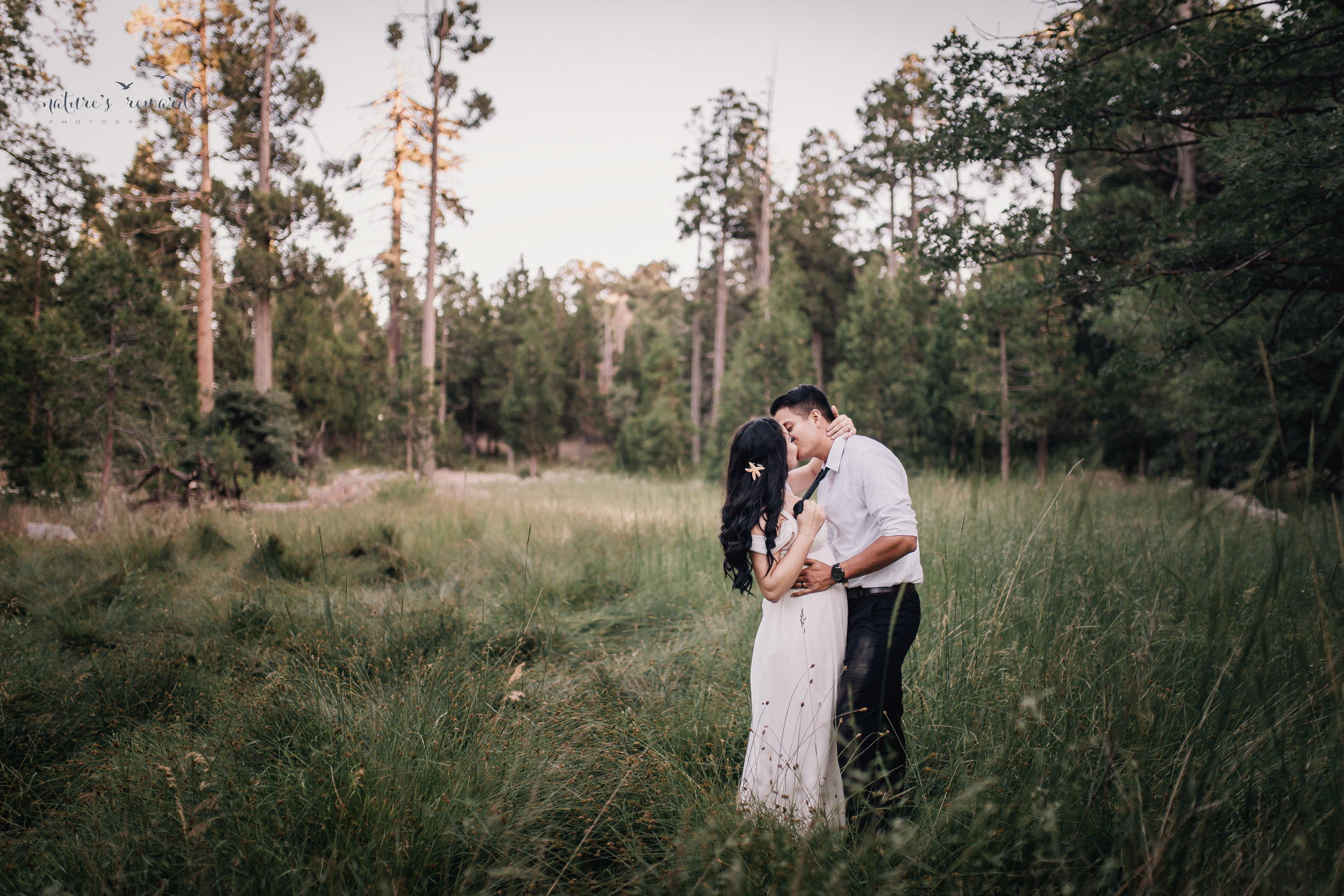 The kiss in a field surrounded by trees in this bride and groom portrait by Nature's Reward Photography