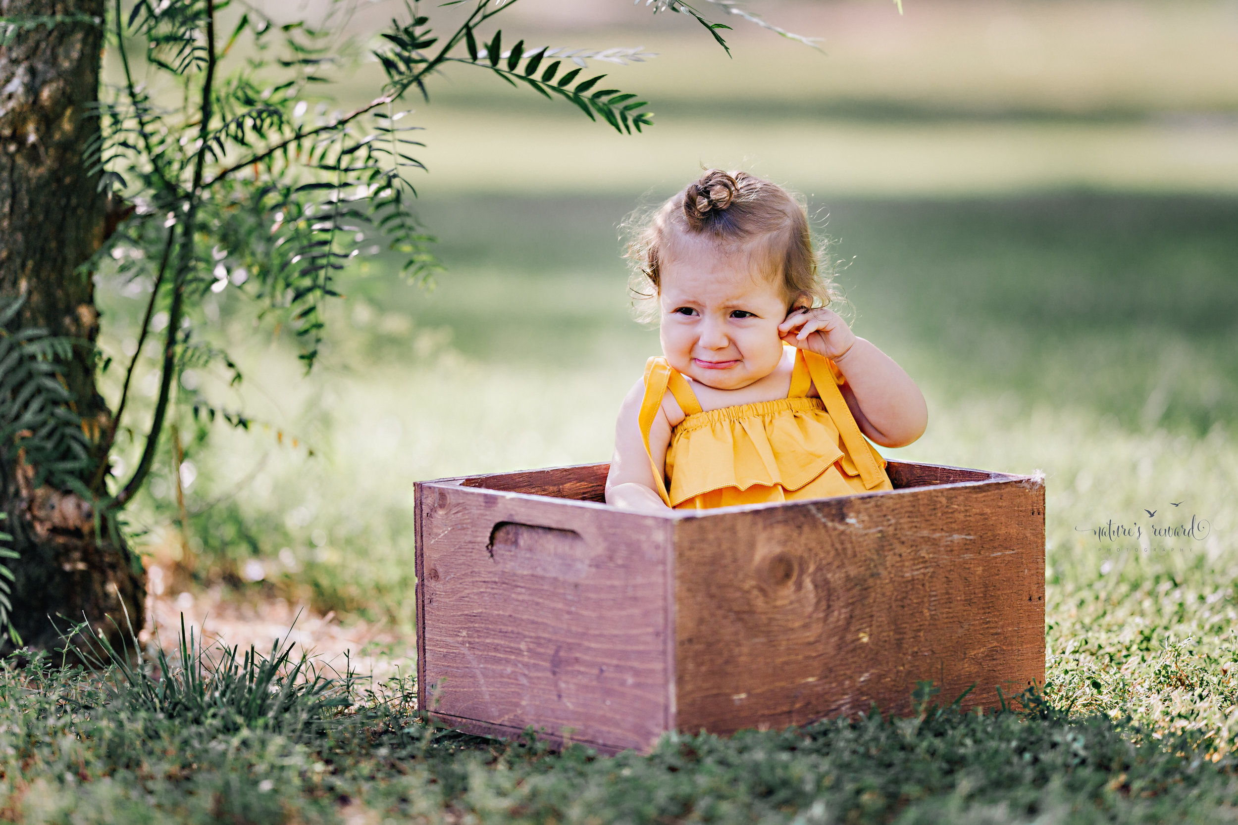 Lovely baby in yellow top in box during her sitter session portrait session by Nature's Reward Photography