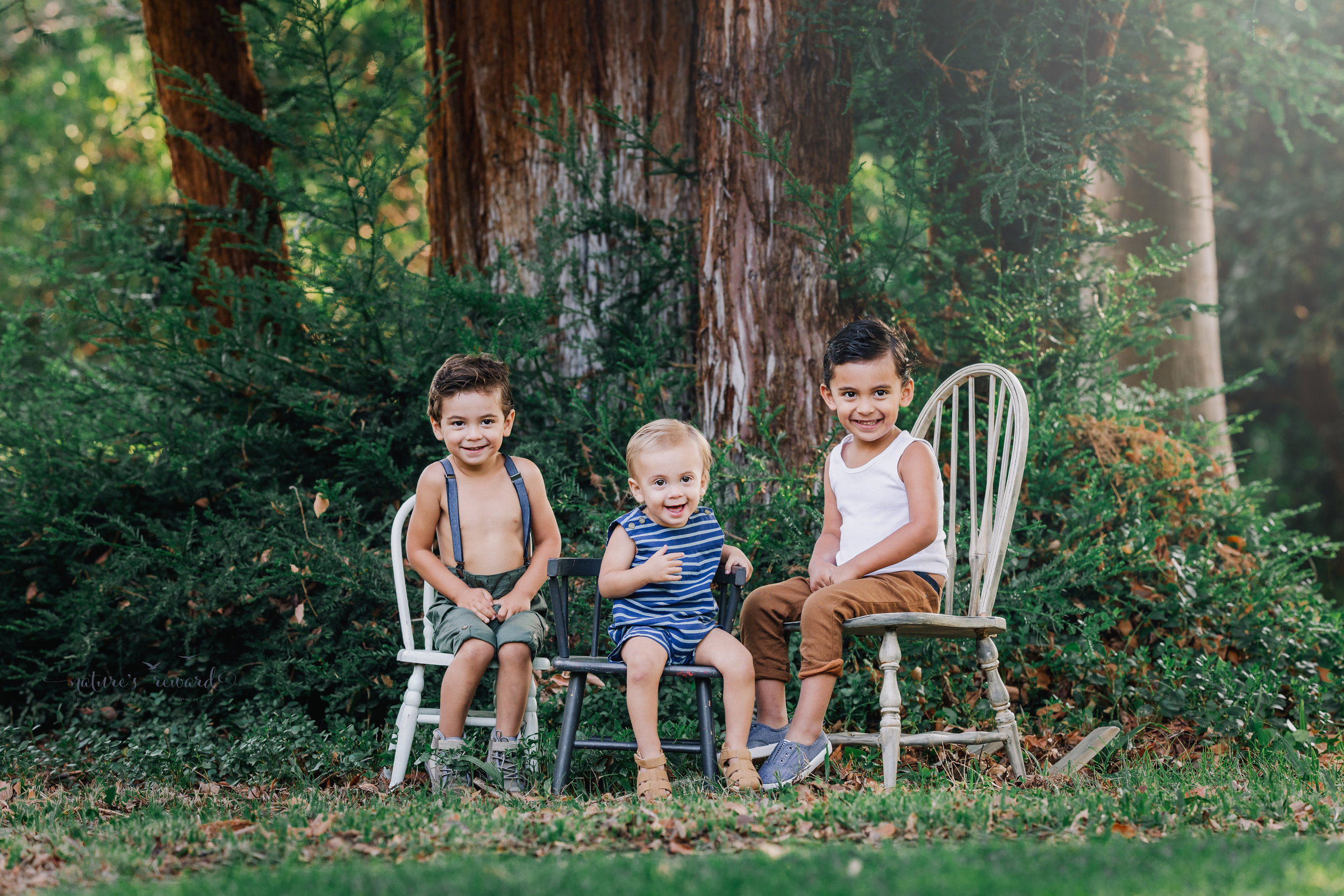 """Beautiful rustic sibling portrait of three beautiful boys sitting on shabby chic chairs while wearing """"vintage"""" inspired clothing, all under the age of four in this portrait by Nature's Reward photography"""