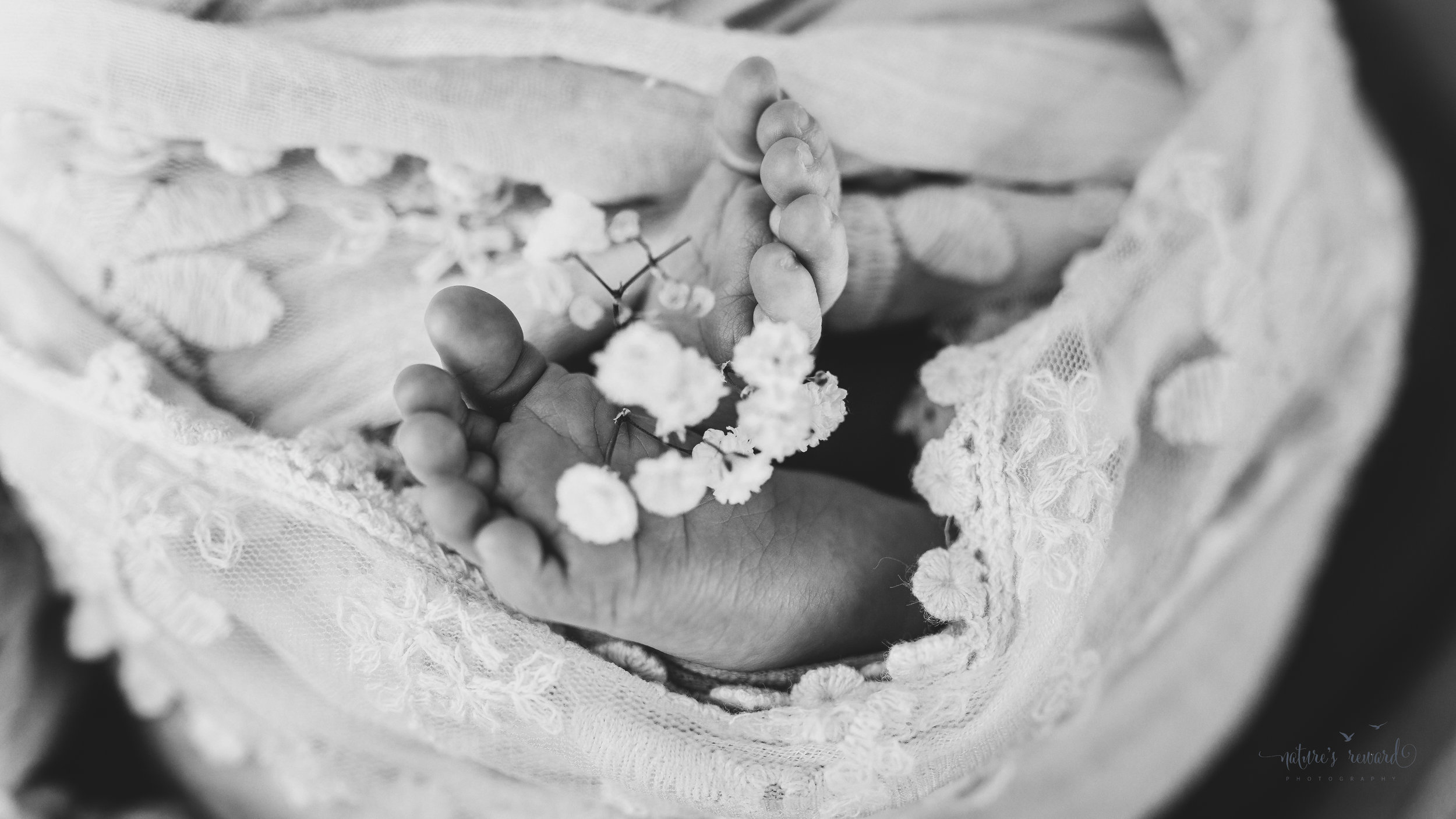Stunning black and white foot detail baby newborn girl swaddled in pink wearing a white tie back and in a garden surrounded by lush greens and flowers in this portrait by Nature's Reward Photography