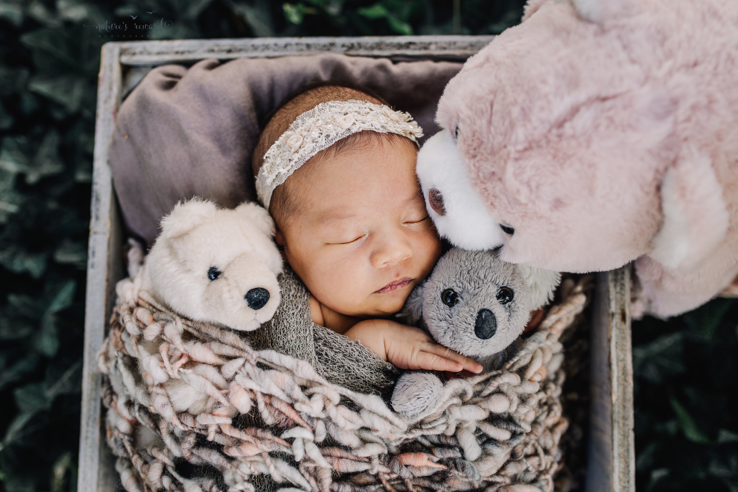 Gorgeous baby newborn girl swaddled in neutral wearing a white tie back and in a garden surrounded by lush greens with her stuffs from home in this portrait by Nature's Reward Photography