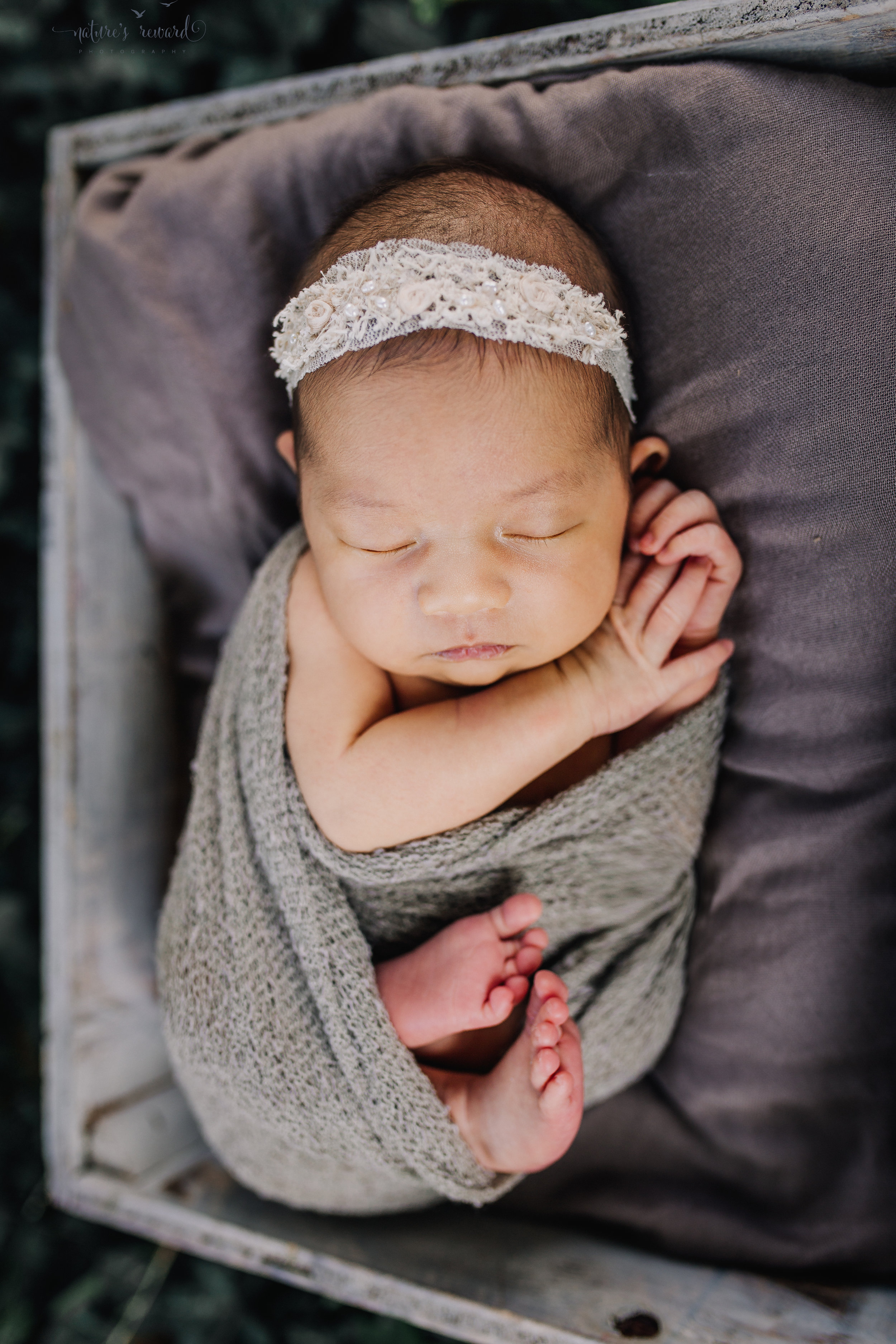 Lovely baby newborn girl swaddled in neutral wearing a white tie back and in a garden surrounded by lush greens in this portrait by Nature's Reward Photography