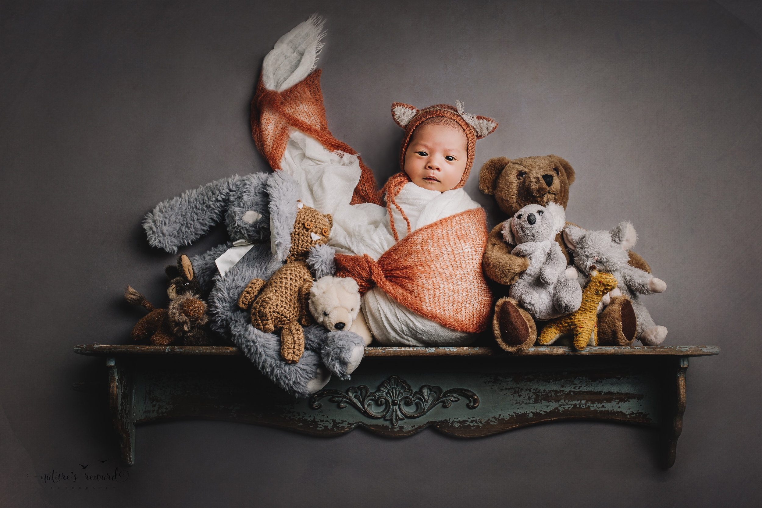 Sweet baby girl on a shelf wearing a fox bonnet while surrounded by all her woodland stuffs in this portrait by Nature's Reward Photography