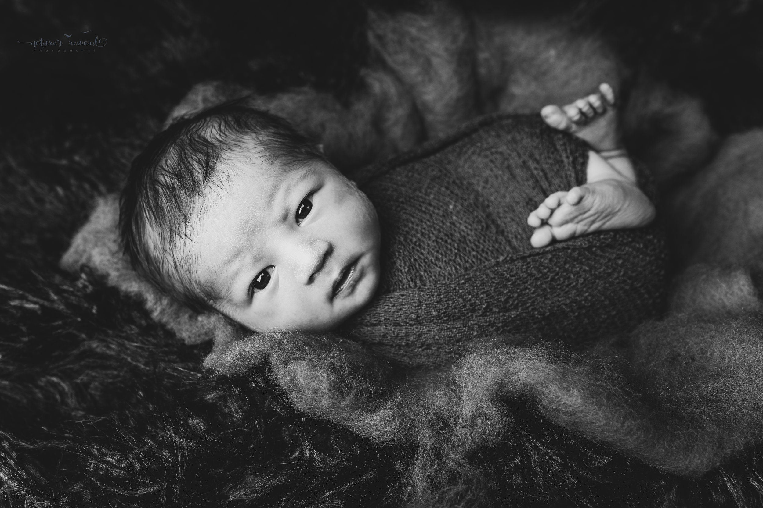 Captivating black and white portrait of a swaddled newborn baby boy by Nature's Reward Photography