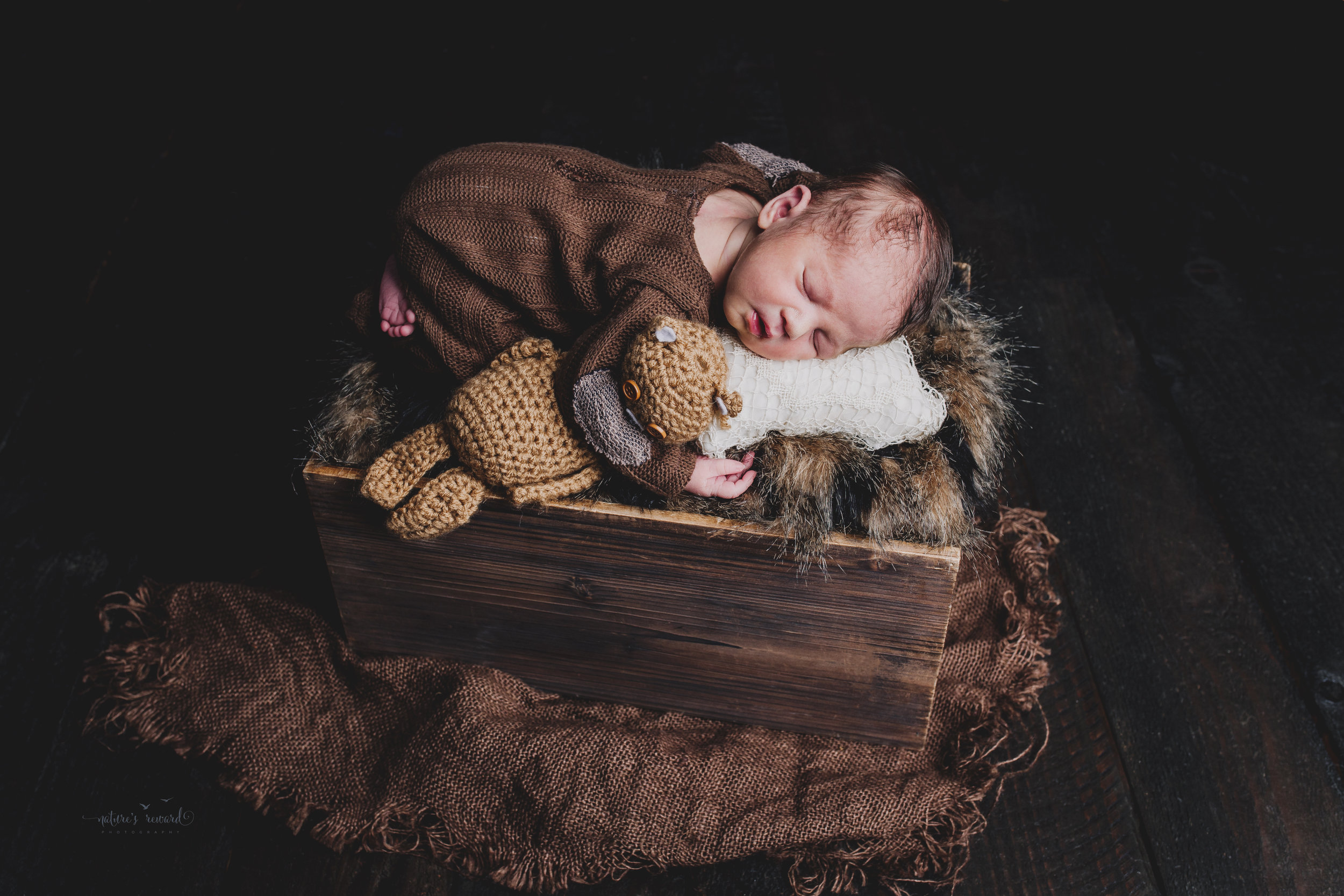 Newborn baby boy portrait wearing a brown outfit and matching cap holding a teddy in a box of fur by Nature's Reward Photography