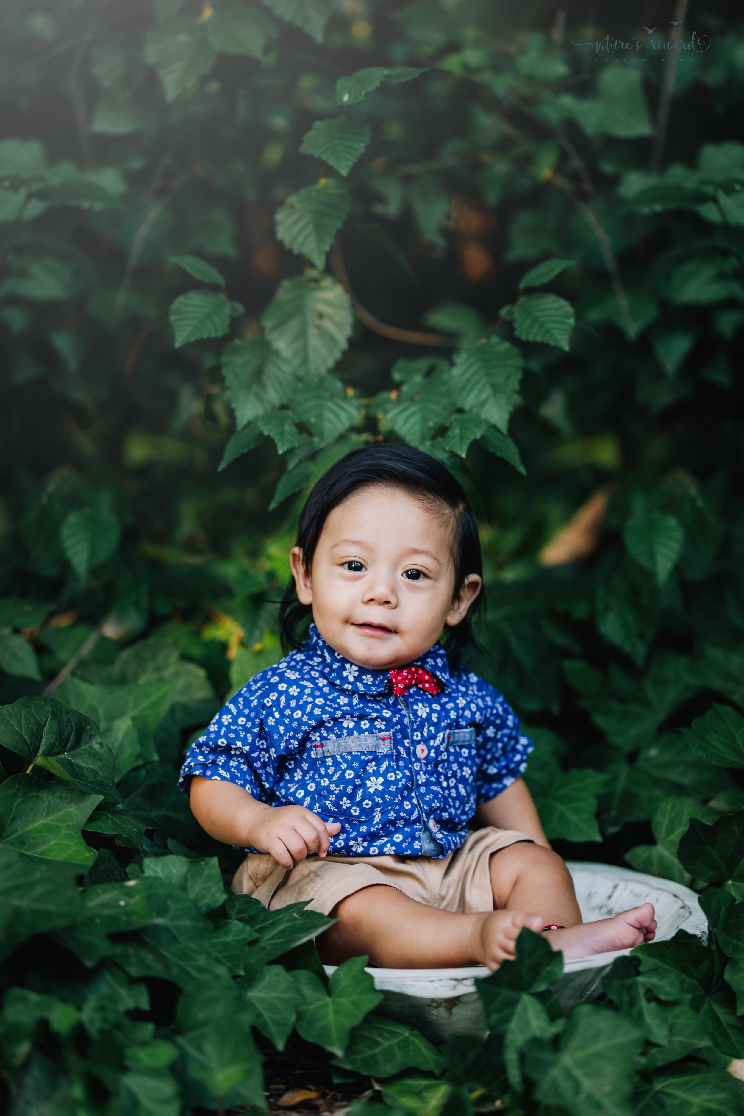 Six month old sitter session in the ivy wearing a button down and a bow tie. A portrait by Nature's Reward Photography