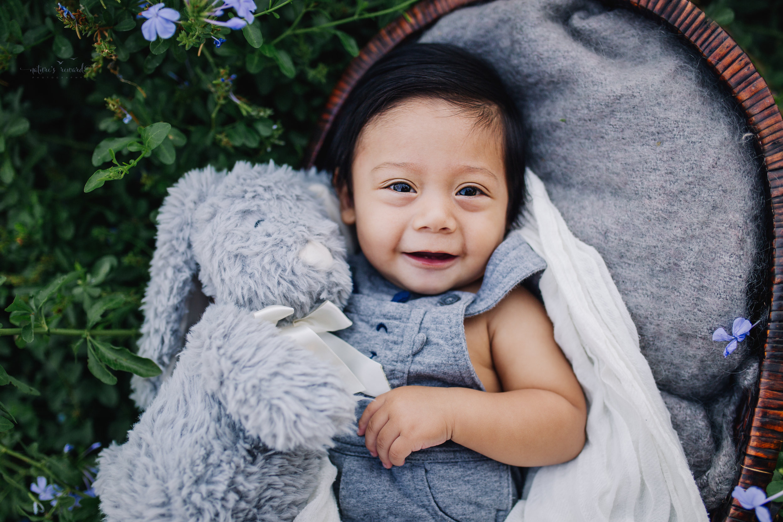 All cuddled up in a grey and with a grey bunny for this sitter session of this six month old baby boy in his 6 month old portrait by Nature's Reward Photography