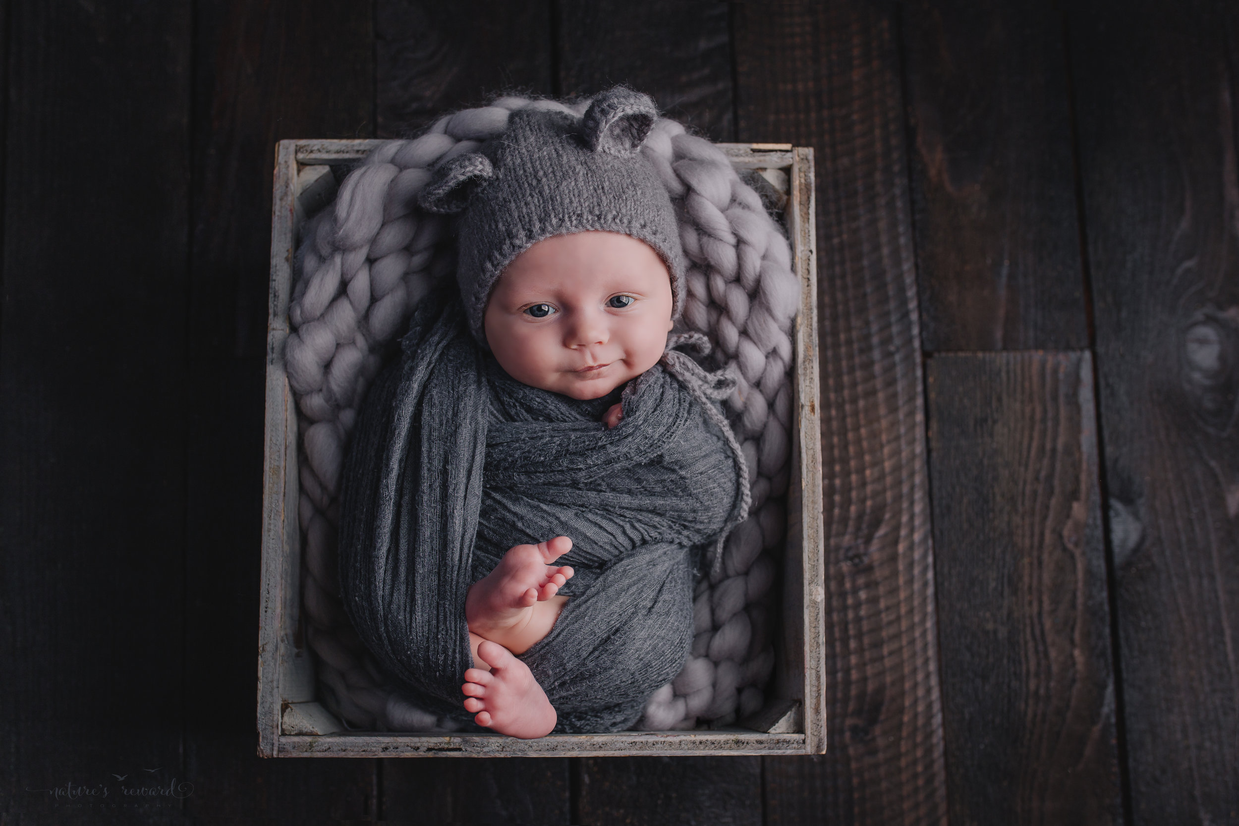 Two month old baby boy newborn baby boy session in a box on a wood floor wearing a teddy hat wrapped in grey- a portrait by Nature's Reward Photography