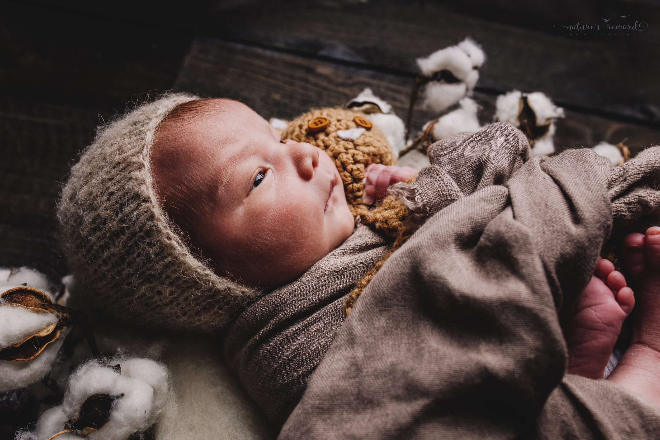 A newborn baby boy on a cotton blossom wreath and a bed of cotton swaddled and wearing a bonnet on a wood floor back drop -a portrait by Nature's Reward Photography