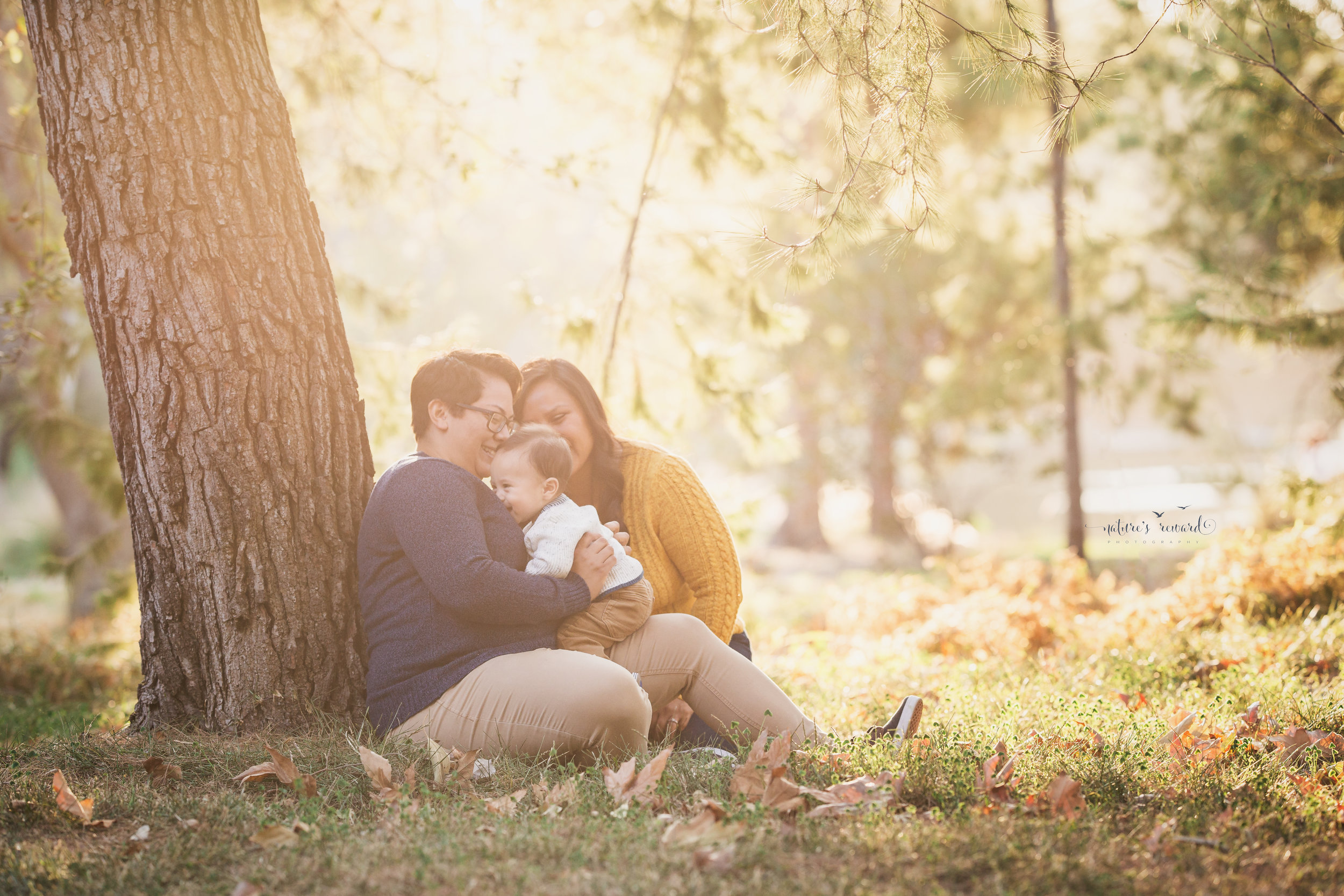 Stunningly gorgeous family portrait in golden sunset light sitting bay a Tree and enjoy gin their baby boy- a family portrait by Nature's Reward Photography