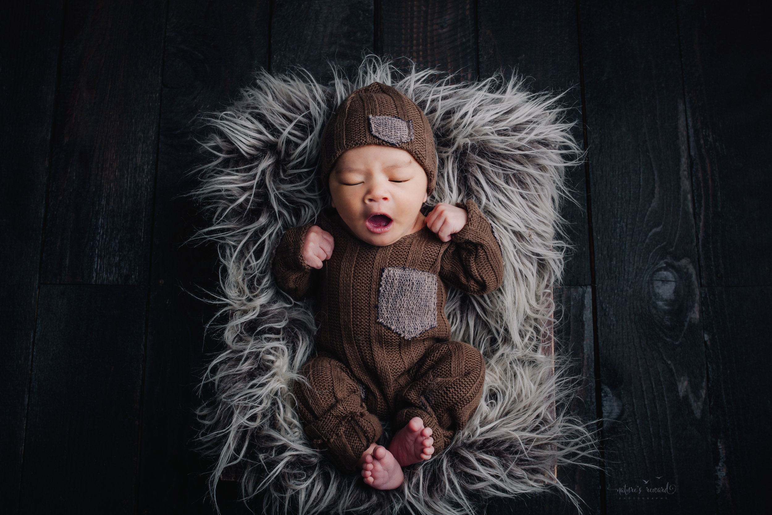 A newborn baby boy in a brown sleeper outfit on a wood floora portrait by Nature's Reward Photography