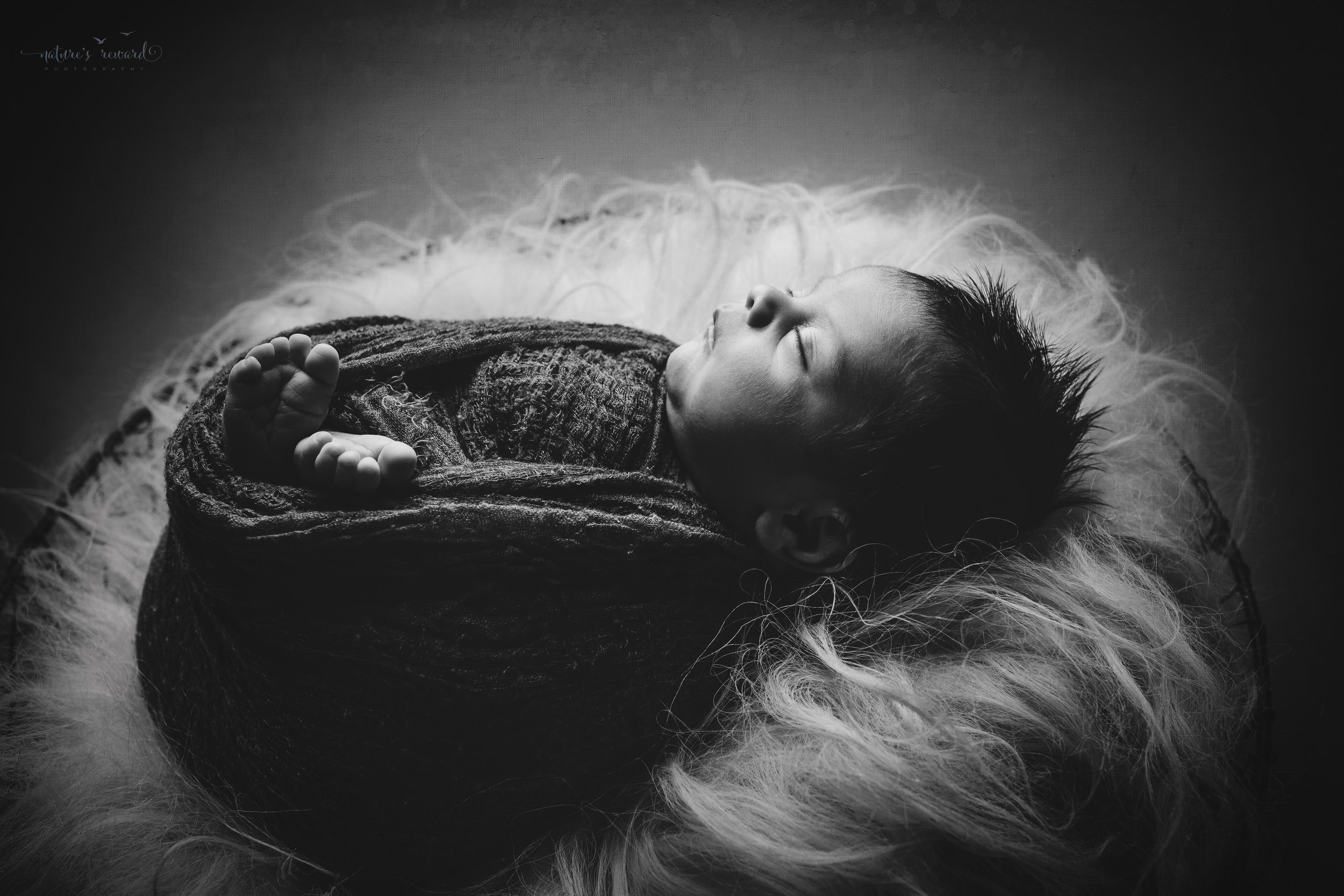 Newborn Baby boy swaddled in grey while laying on a bed of white fur in a metal bowl - a black and white portrait by Nature's Reward Photography