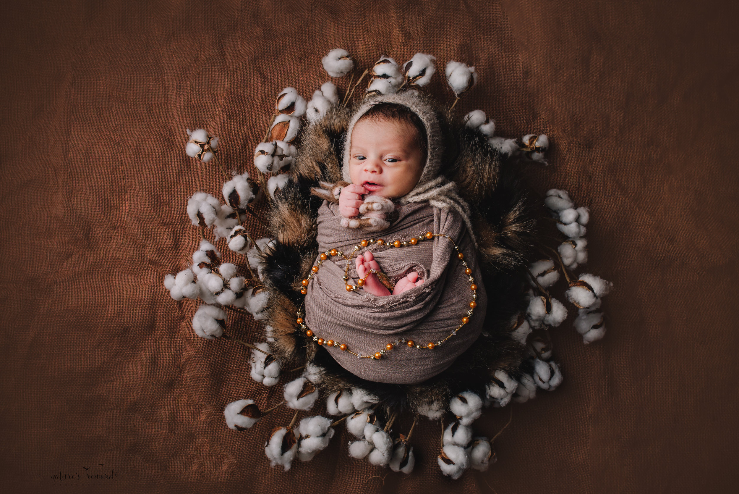 Newborn Baby boy swaddled in tan while laying on a bed of brown and black fur in a cotton blossom wreath wearing a tan bonnet holding a felt bonny and draped with a gold beaded rosary  - a portrait by Nature's Reward Photography