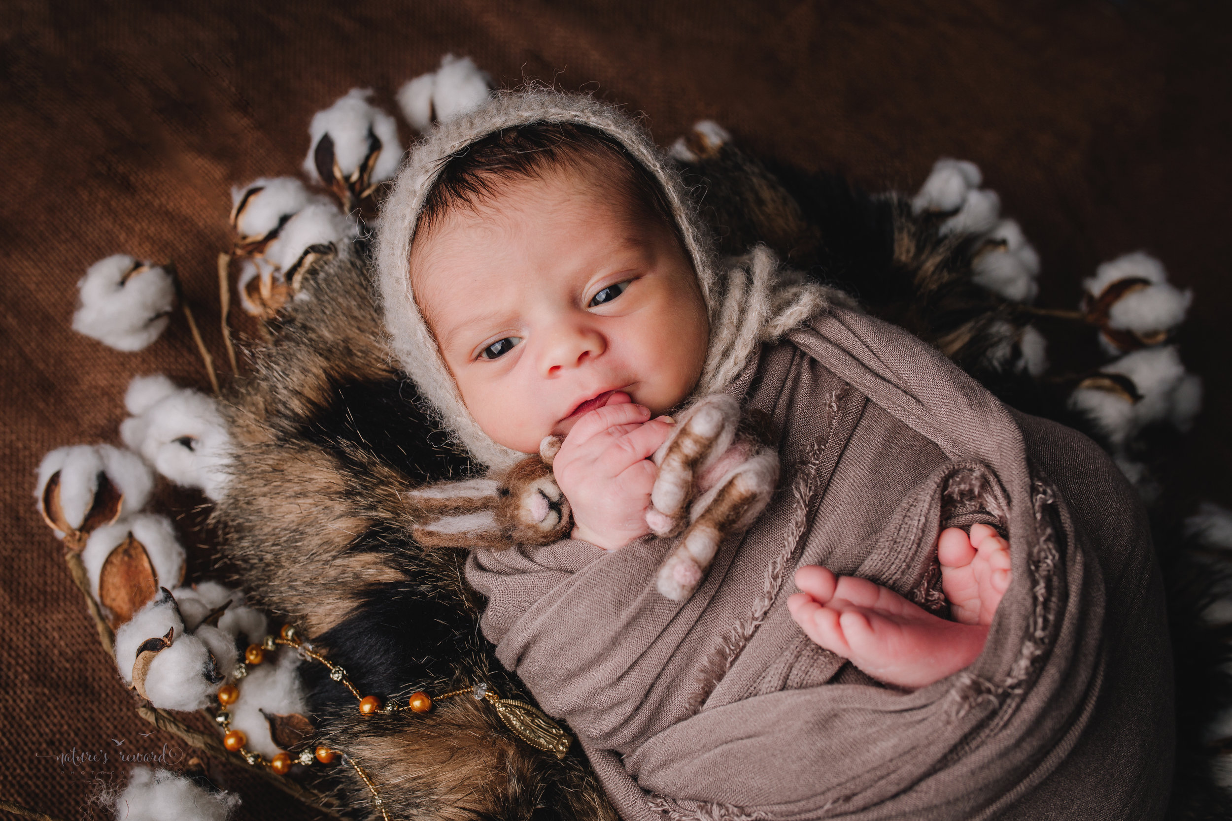 Newborn Baby boy swaddled in tan while laying on a bed of brown and black fur in a cotton blossom wreath wearing a tan bonnet holding a felt bunny laying next to a rosary - a portrait by Nature's Reward Photography