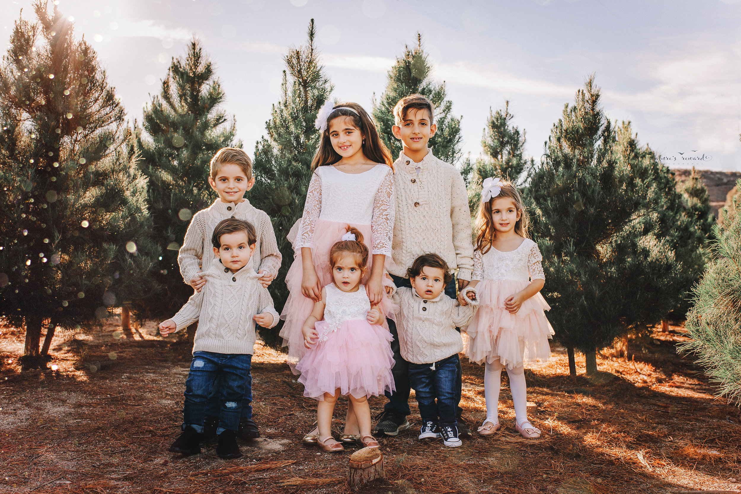 This gorgeous bunch!  Cousins!  A Christmas tree farm portrait by Nature's Reward Photography