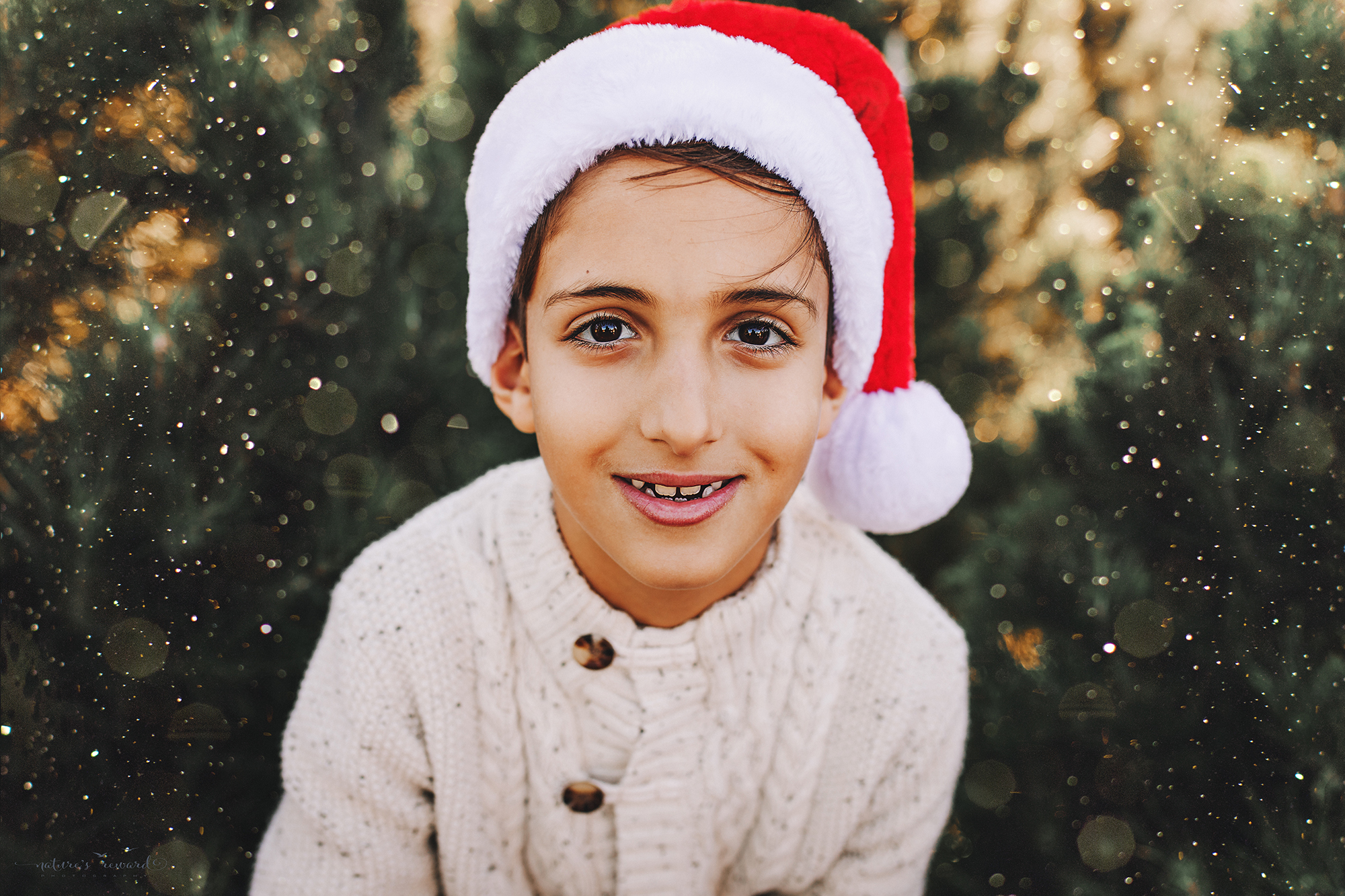 Gorgeous young man in Santa hat- A Christmas tree farm portrait by Nature's Reward Photography