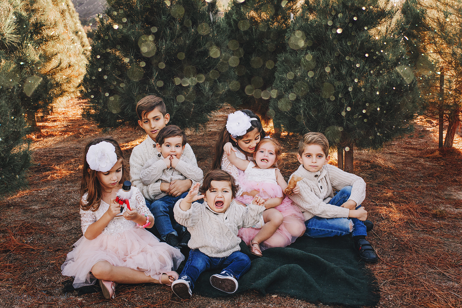 How a session with 7 children really looks- A Christmas tree farm portrait by Nature's Reward Photography- if you can't laugh through this, don't photograph kids!