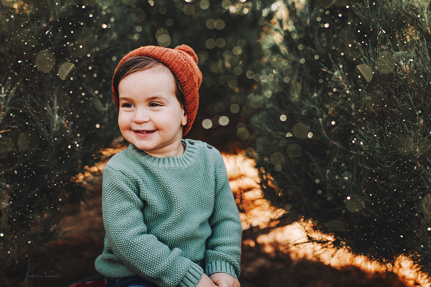 So cute- A Christmas tree farm portrait by Nature's Reward Photography
