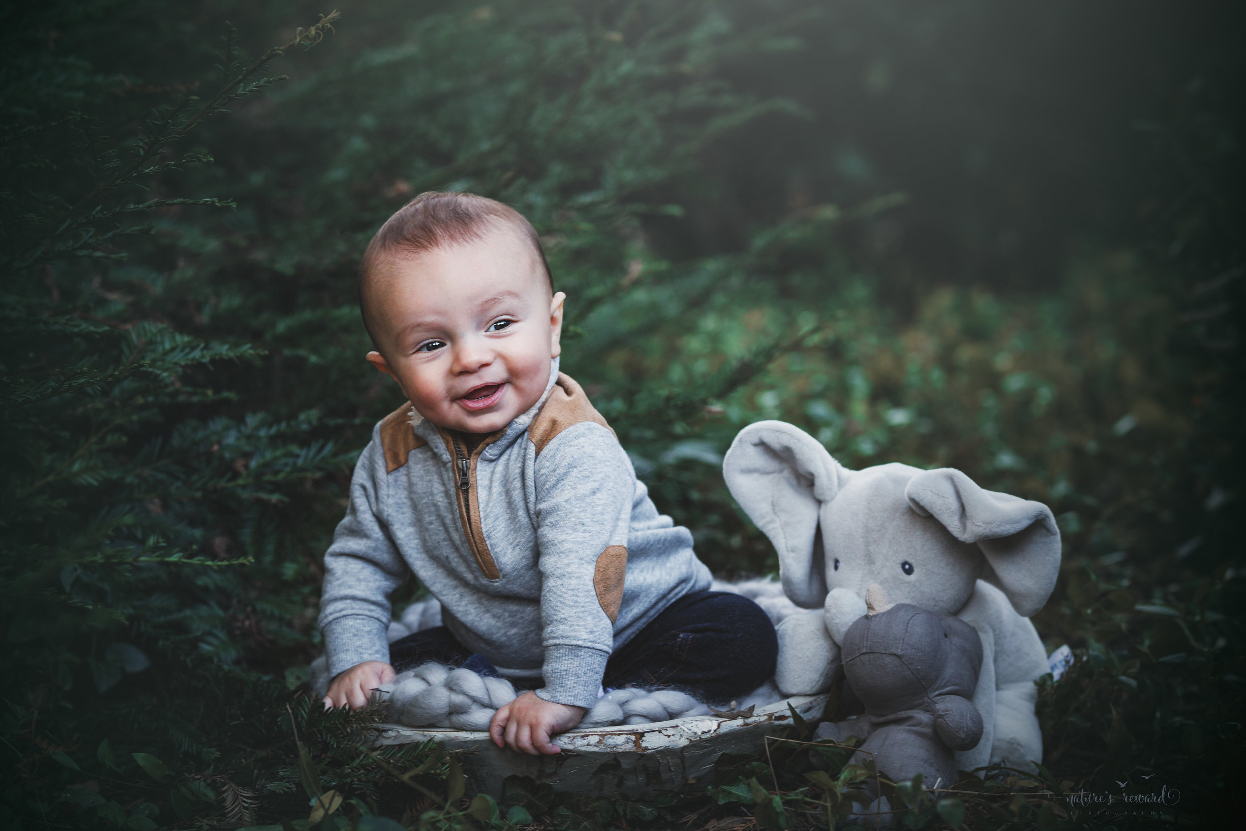 6 Month sitter baby boy in grey with his stuffed elephant and rhinoceros in a lush green park setting in Redlands, Ca. by San Bernardino photographer- Nature's Reward Photography
