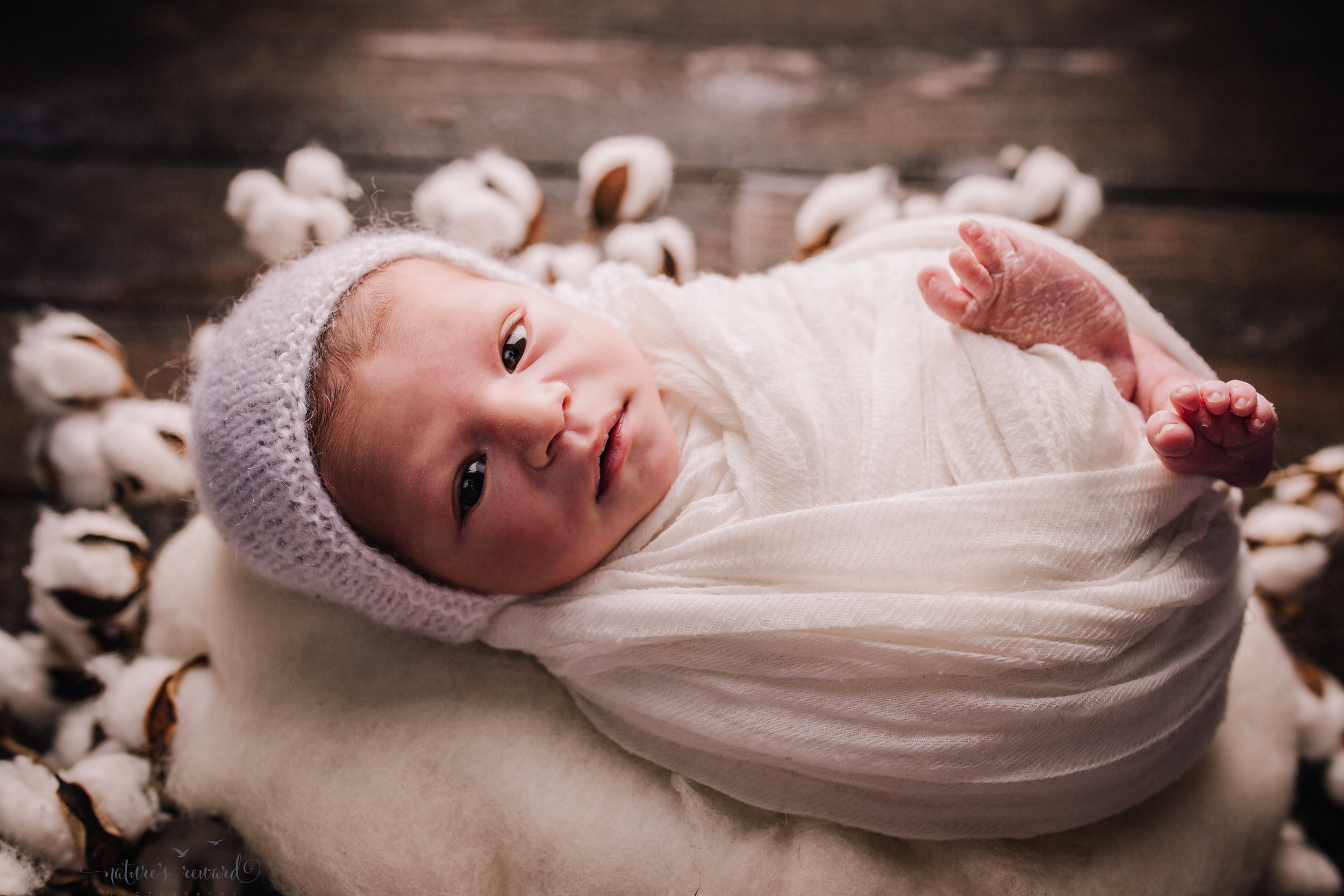 Newborn baby boy swaddled in white on a cotton wreath on a dark wood floor by san Bernardino's maternity, newborn and family photography, Nature's Reward Photography
