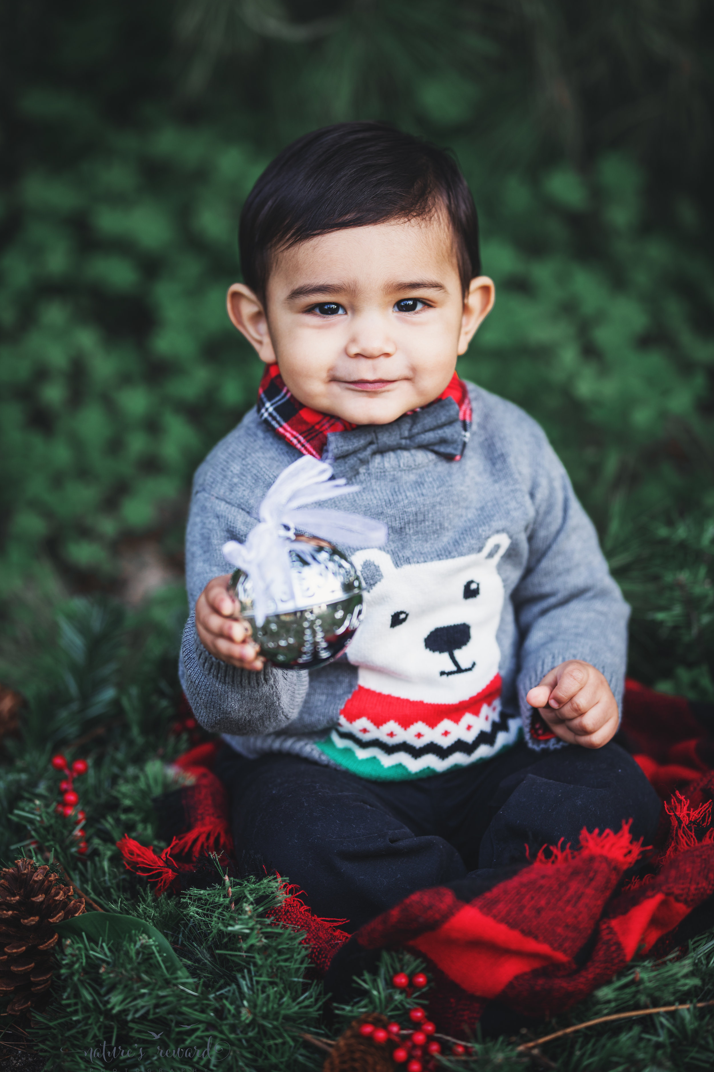 Beautiful baby boy in a Christmas portrait by Nature's Reward Photography