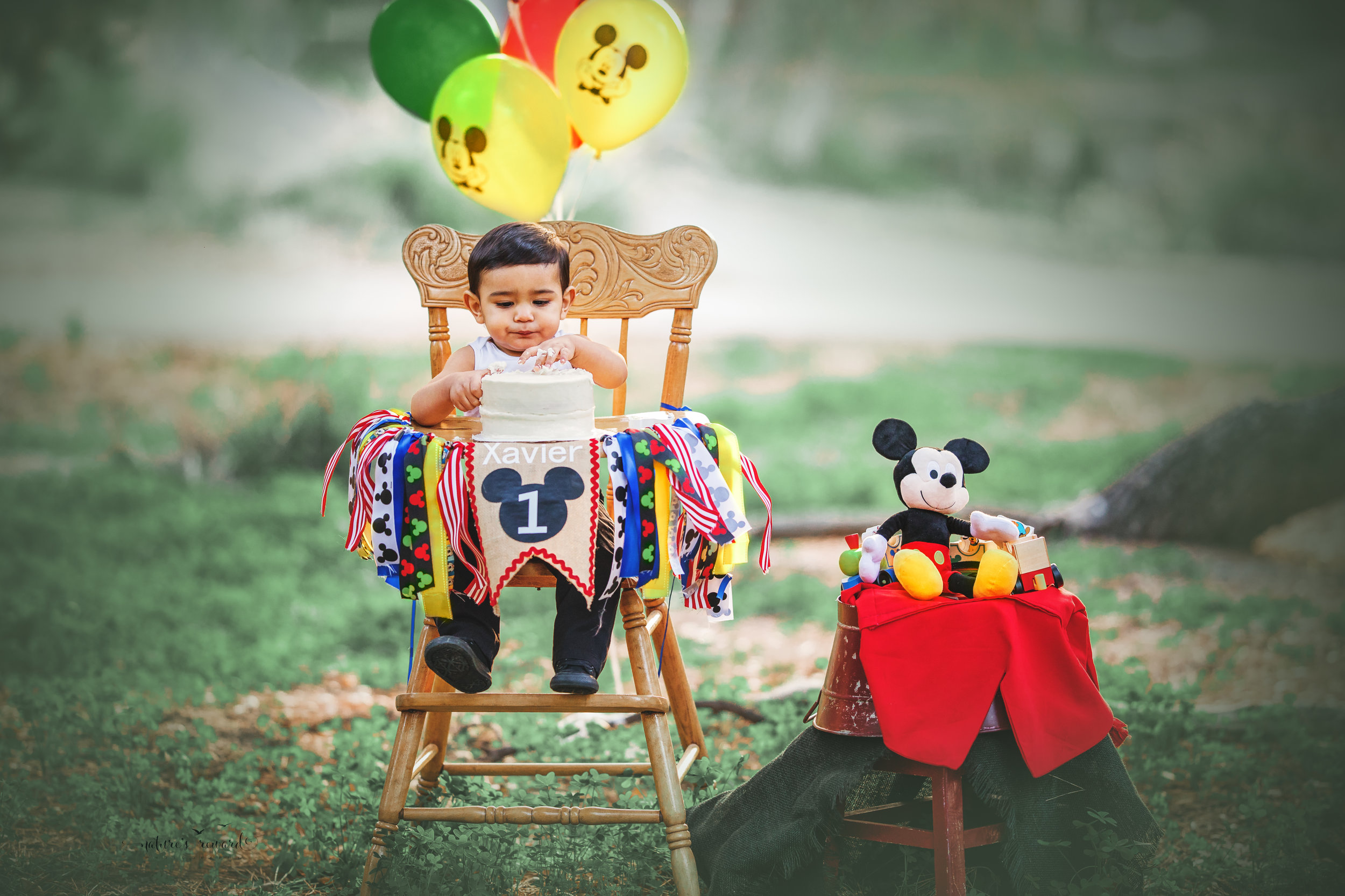 Celebrating his first birthday with Disney's Toodles in this portrait by Nature's Reward Photography