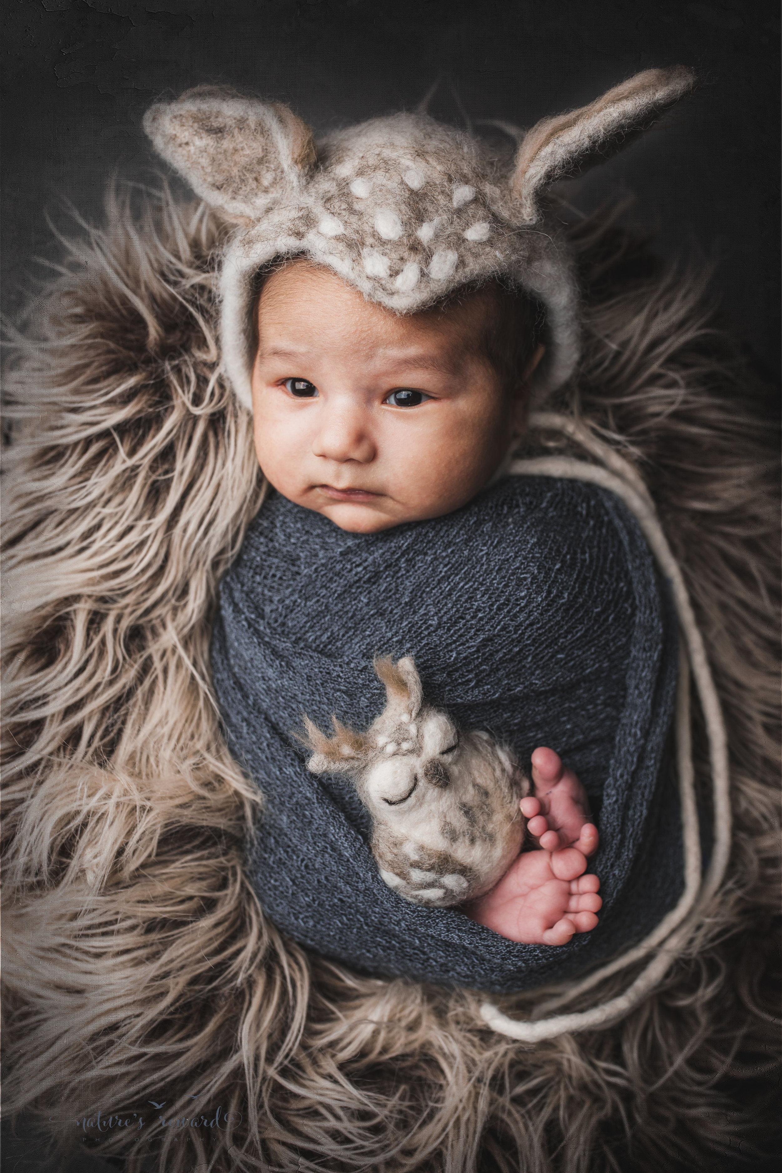 Newborn baby boy swaddled wearing an owl bonnet a portrait by Nature's Reward Photography