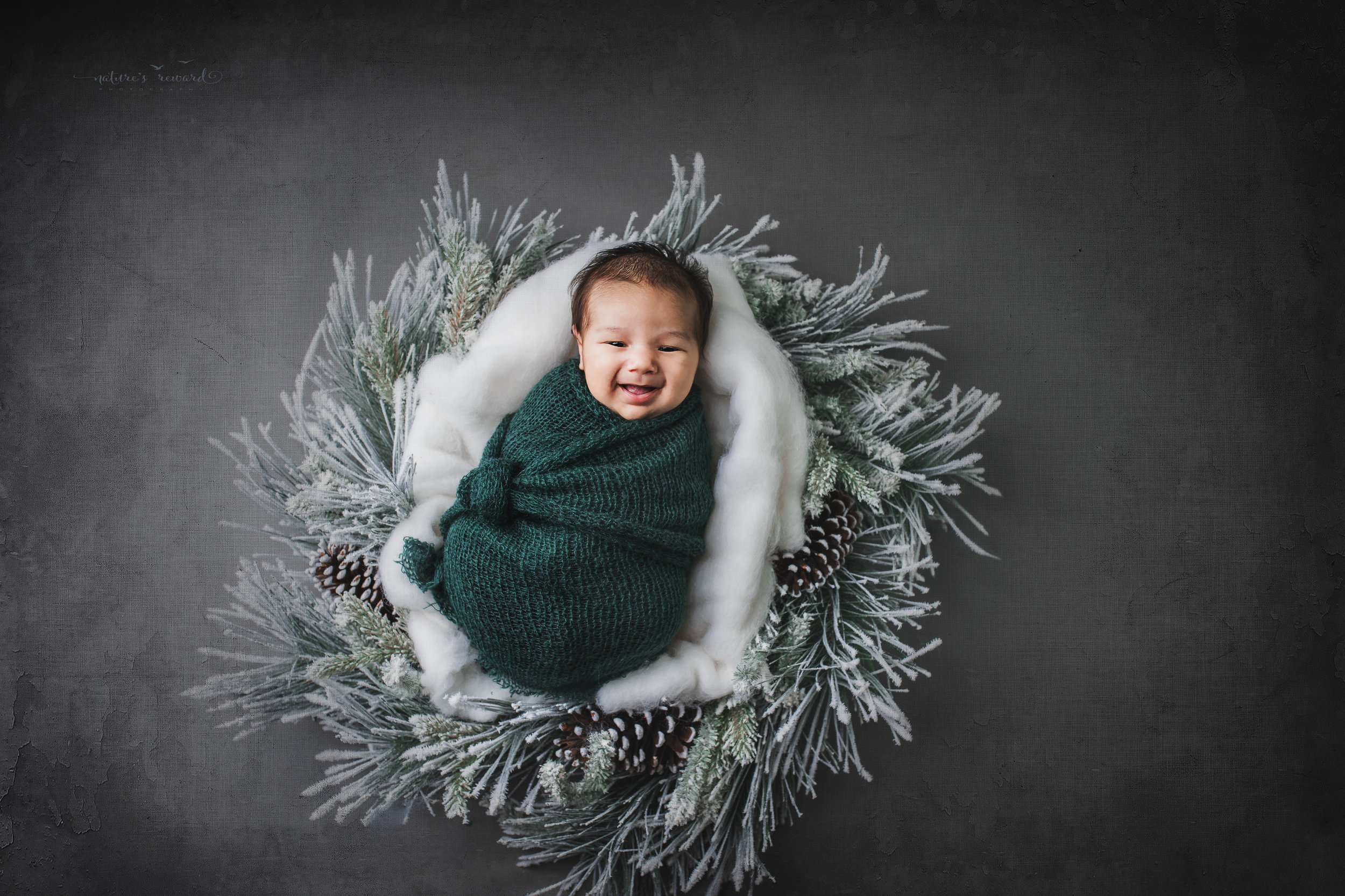 Newborn baby boy swaddled in green in a winter wreath a portrait by Nature's Reward Photography