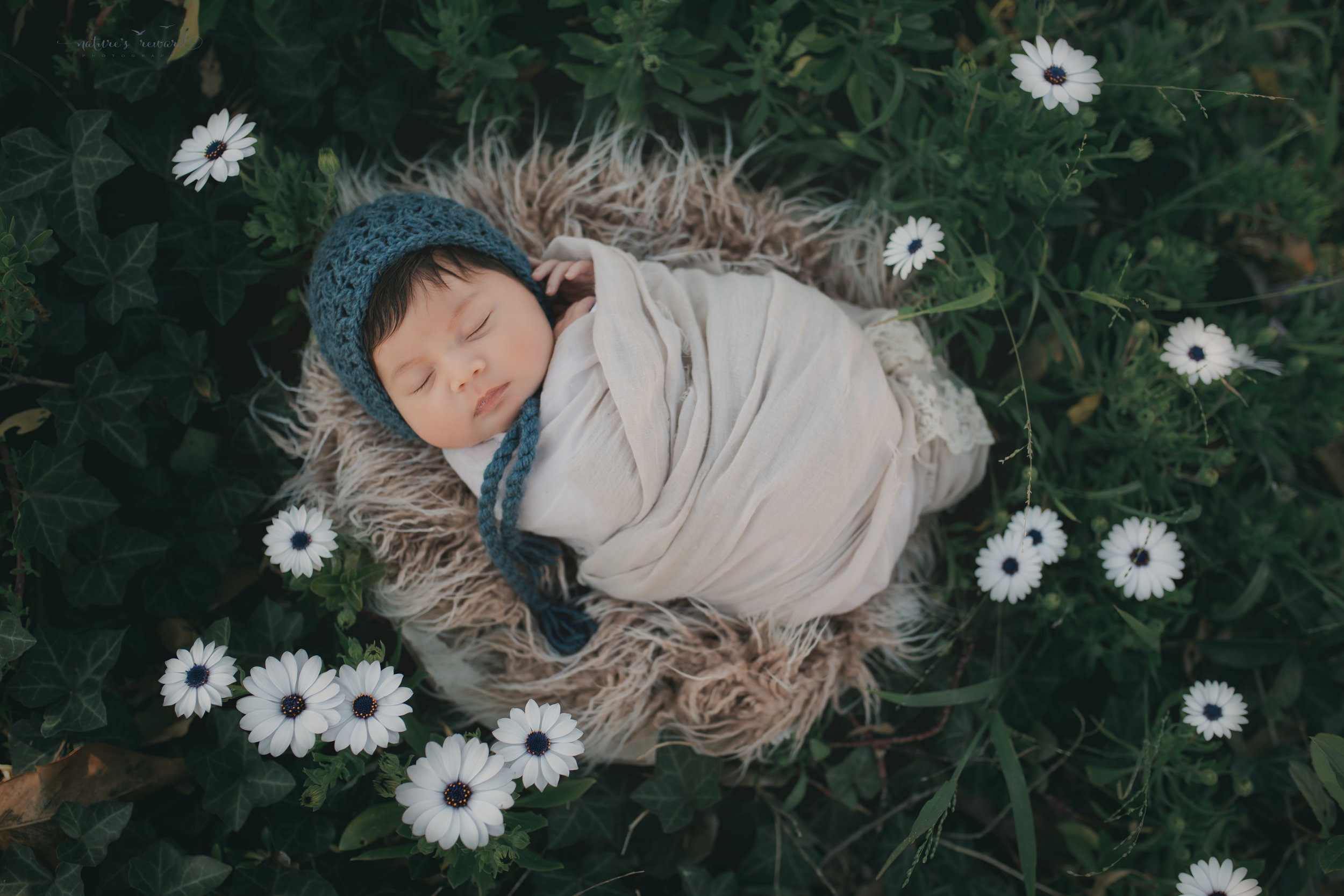 Newborn baby girl in this garden portrait of flowers, a portrait by Nature's Reward Photography